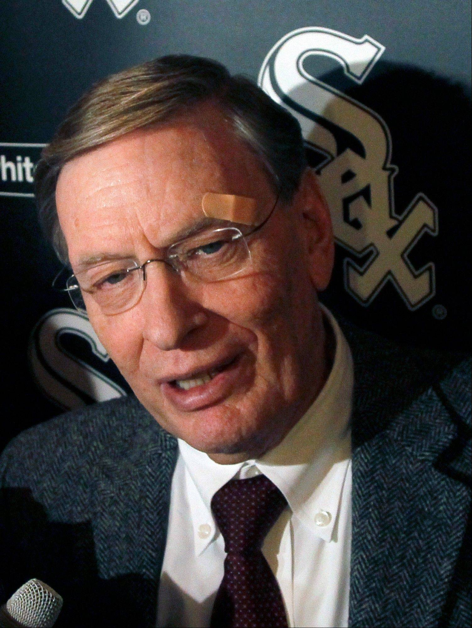 Baseball Commissioner Bud Selig responds to a question at the Chicago White Sox fan festival.