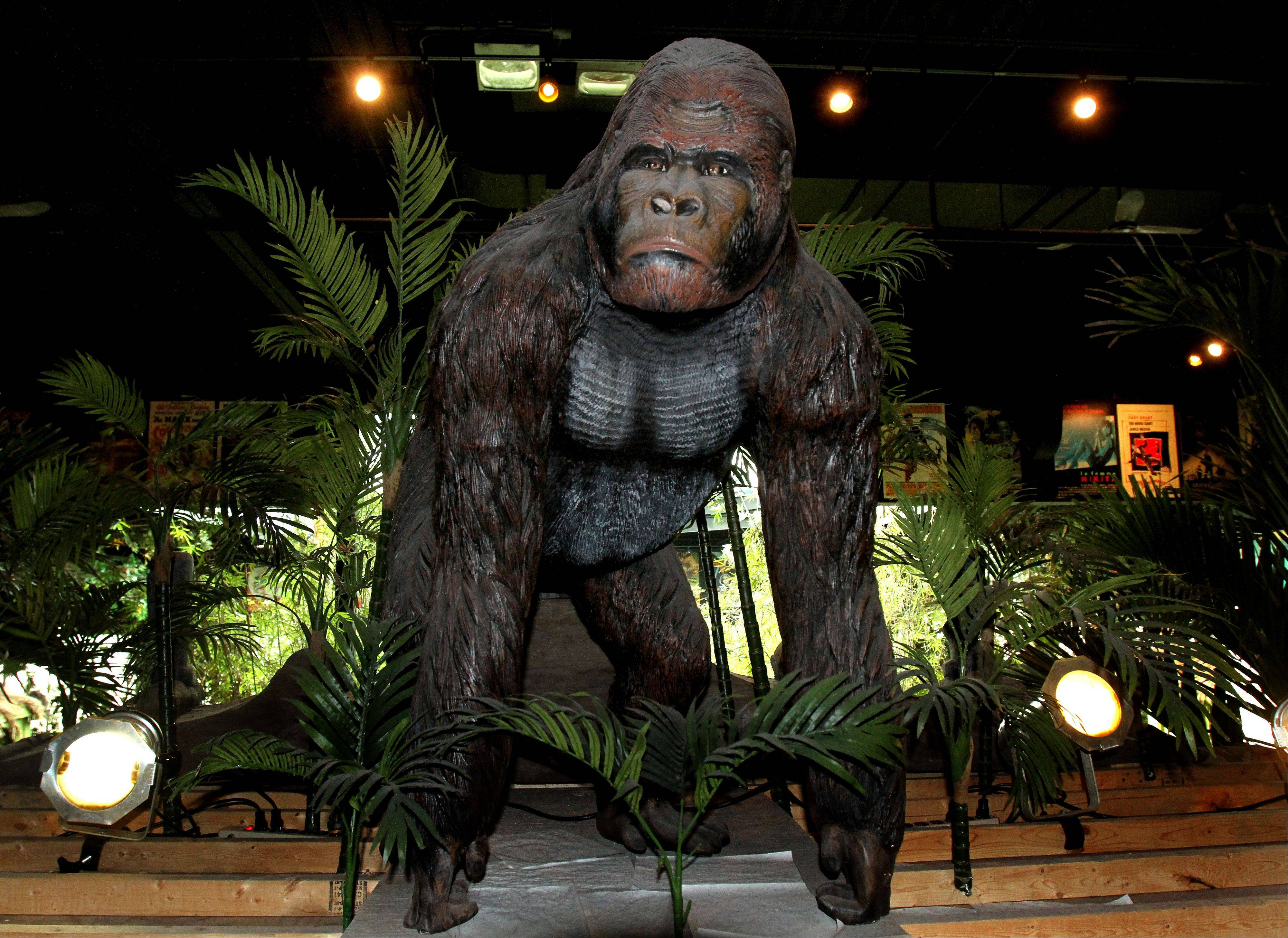 Many people probably do not even see the giant gorilla overlooking the entrance into the theaters at the Hollywood Palms Cinema in Naperville.