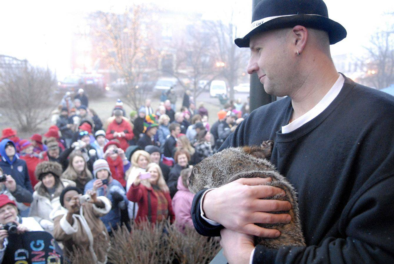 Animal handler Mark Szafarn of Chicago holds Woodstock Willie for the crowd to photograph at the annual Groundhog Day extravaganza Thursday morning in Woodstock.