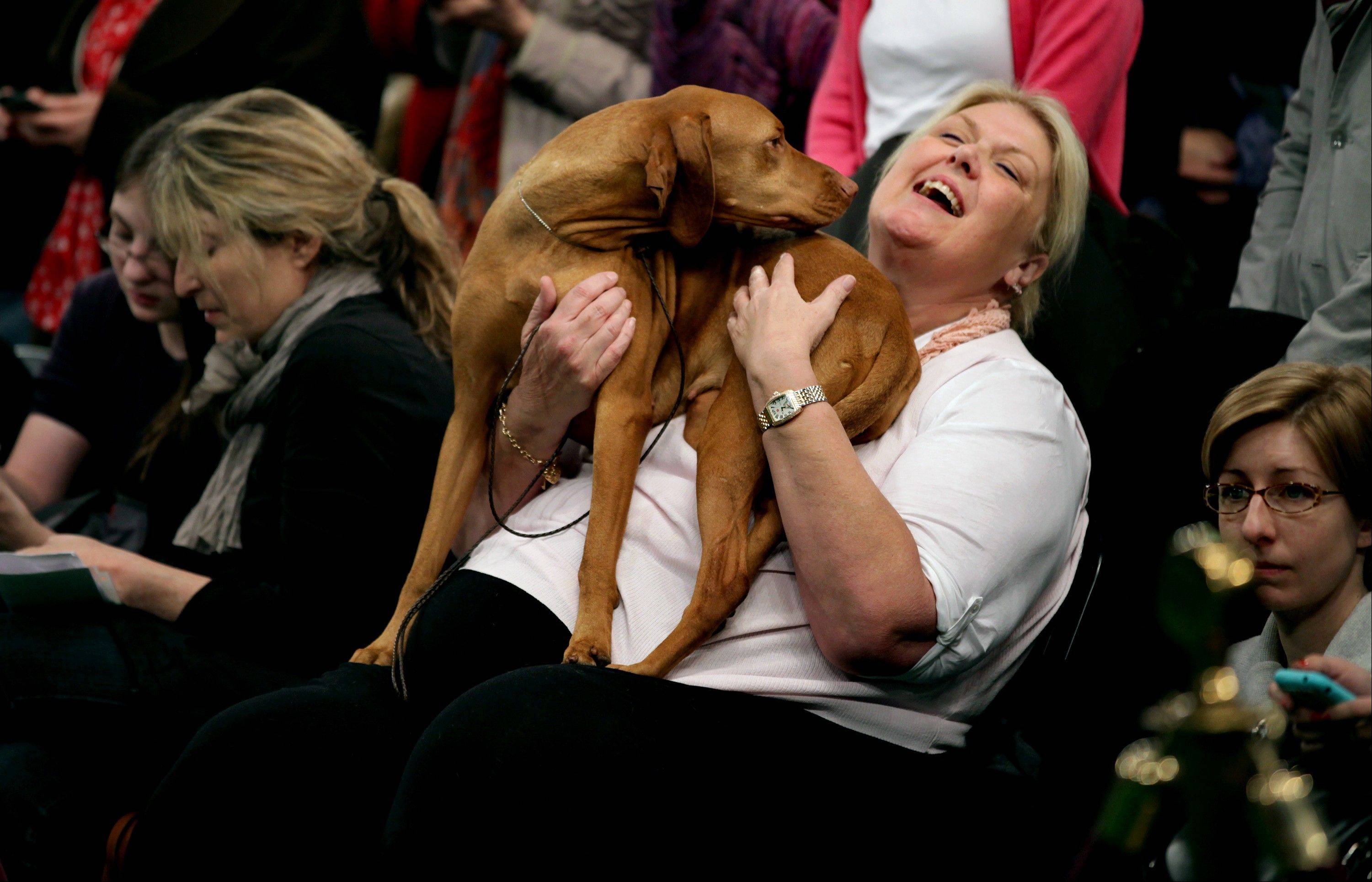 Cathleen Cline of Los Angeles holds her vizsla, Marlo Classic That Girl.