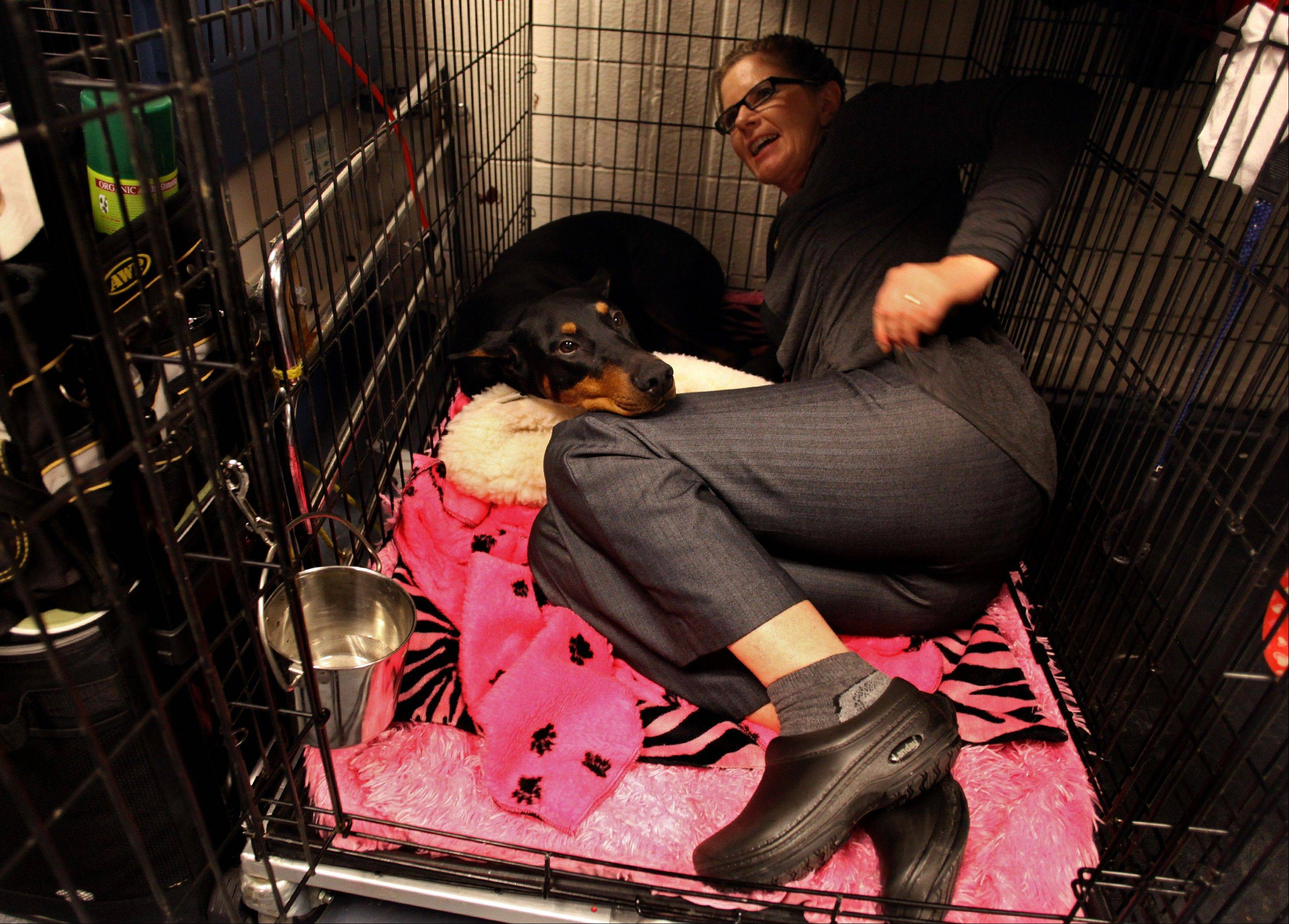 Fifi, a doberman pinscher, is joined in her cage by co owner Suzy Lundy of Oregonia, Ohio in the backstage area.