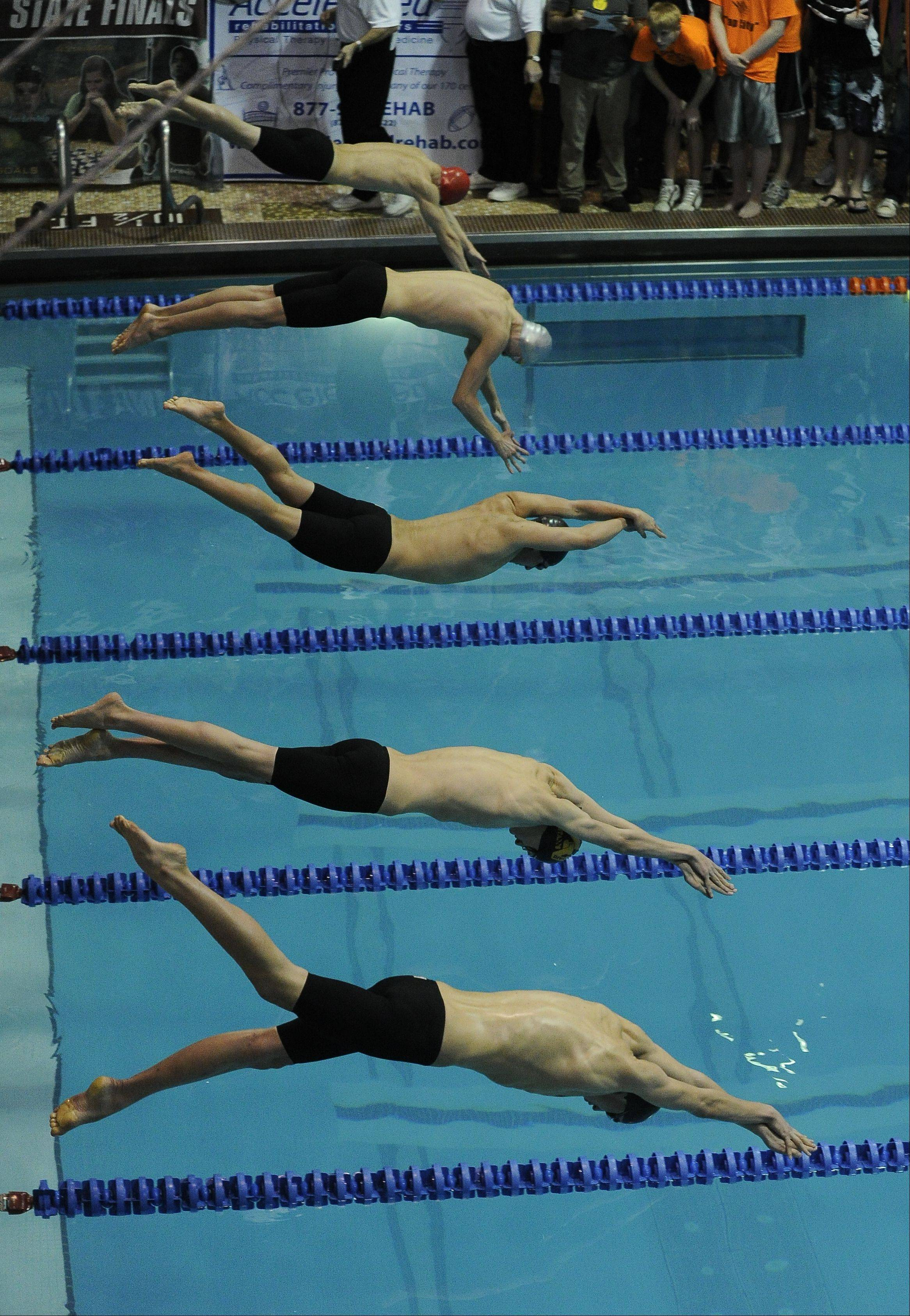 Images of Friday's boys state swimming meet