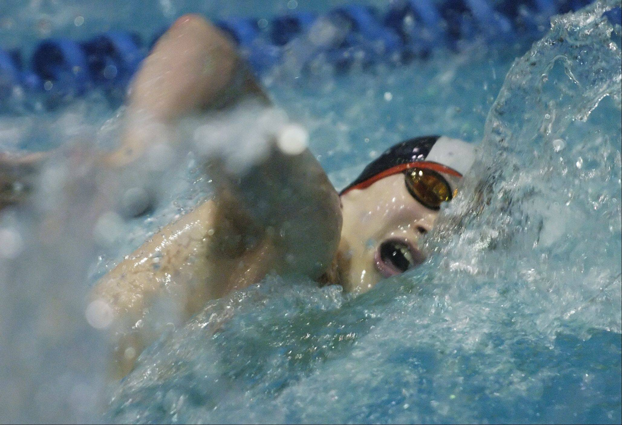 Mundelein's Connor Black swims the 100-yard freestyle during the boys state swimming finals at Evanston High School Saturday.
