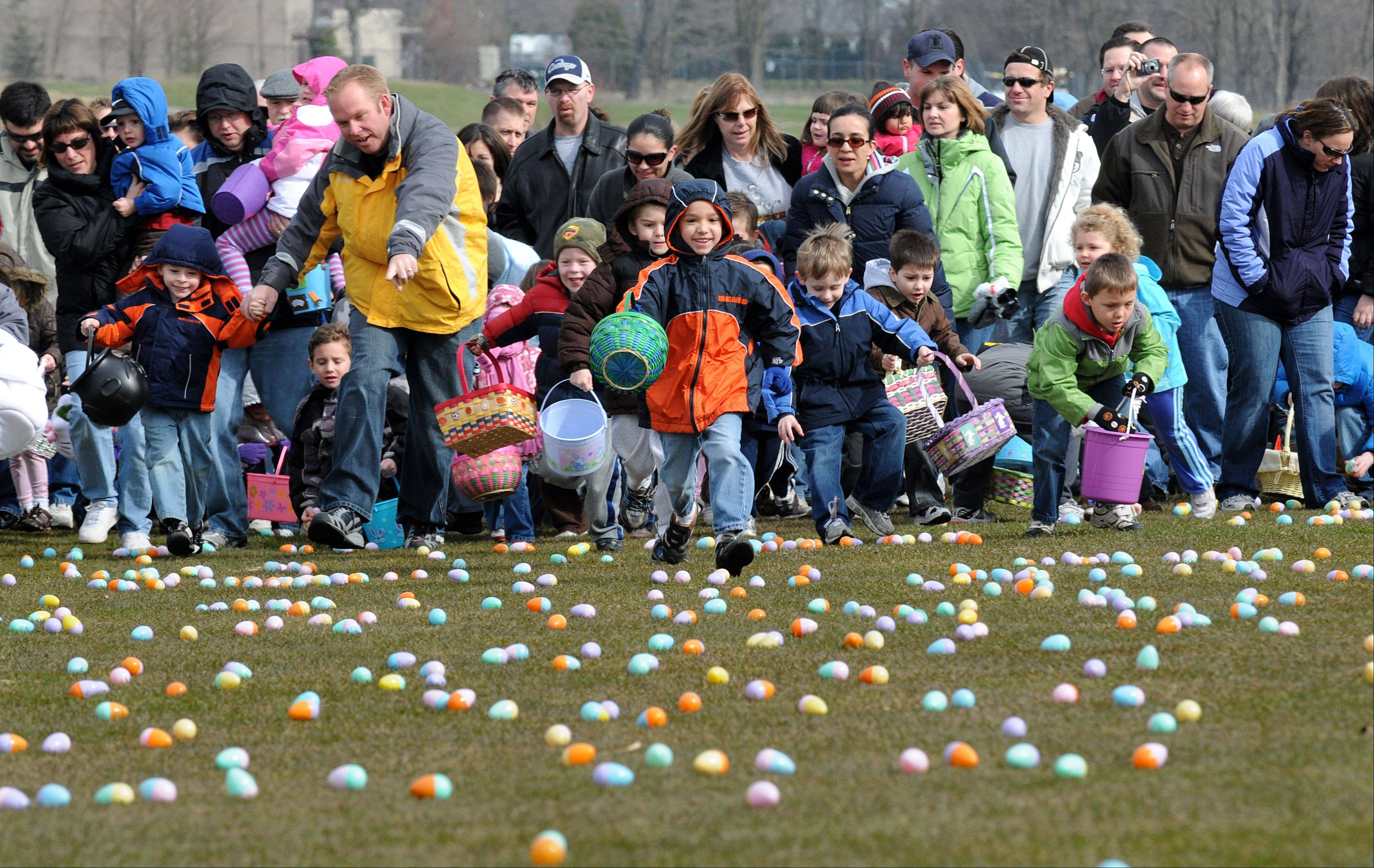 And they're off! Children sprint onto a grassy field in Algonquin to collect 14,000 plastic eggs in a matter of minutes.