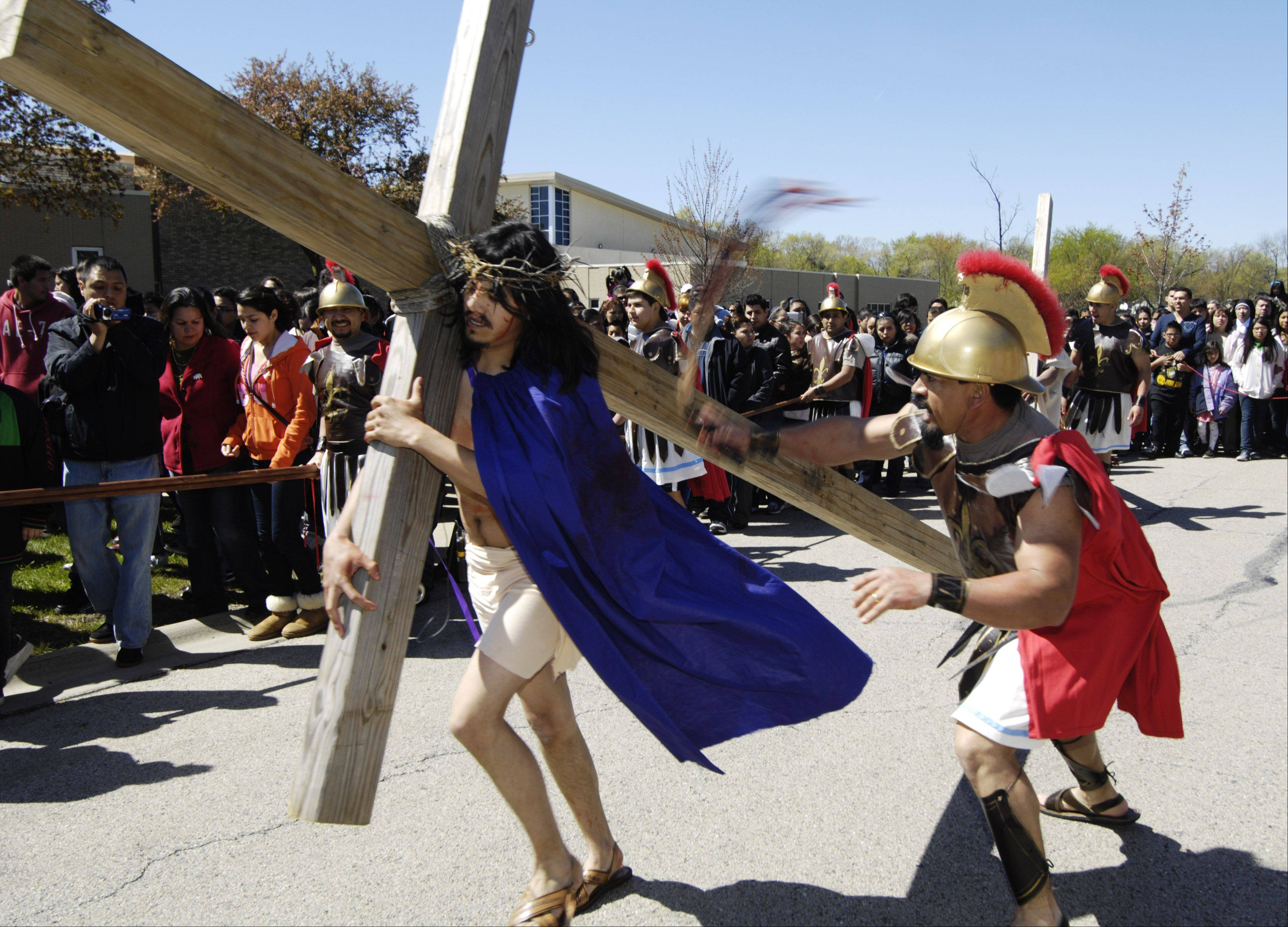 Jesus, portrayed by Martin Carrera of Palatine, carries his cross during the Good Friday procession between St. Thomas of Villanova in Palatine and Mission San Juan Diego in Arlington Heights.