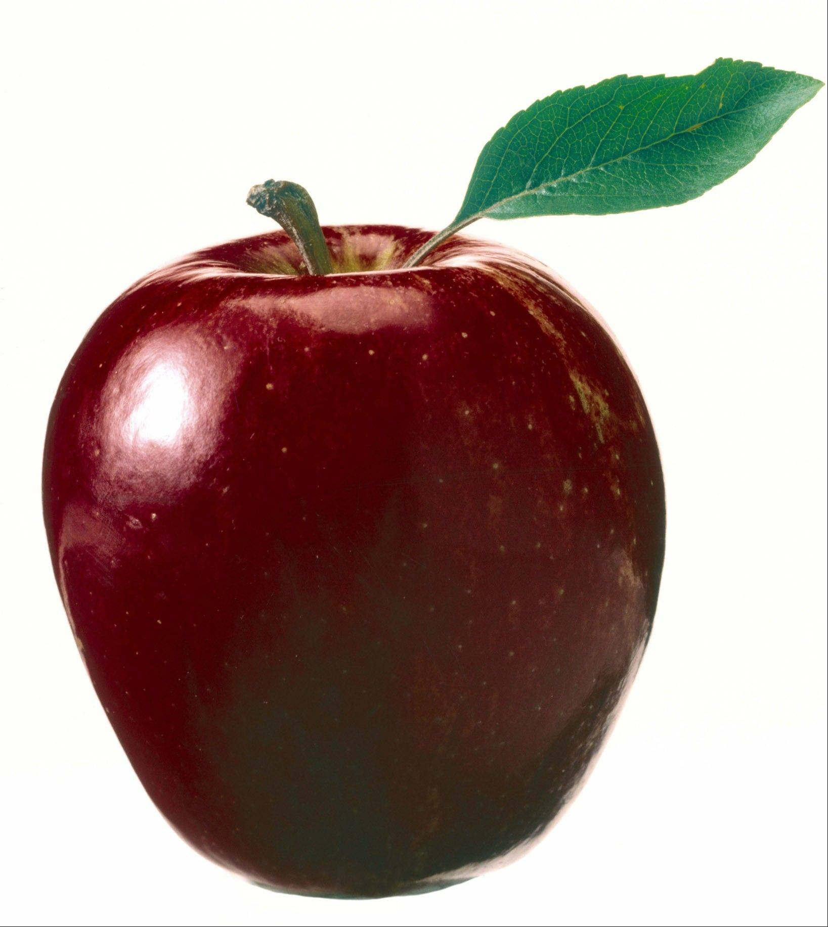 Apple pectic binds to cholesterol in the stomach and helps to remove it from the body, according to experts.