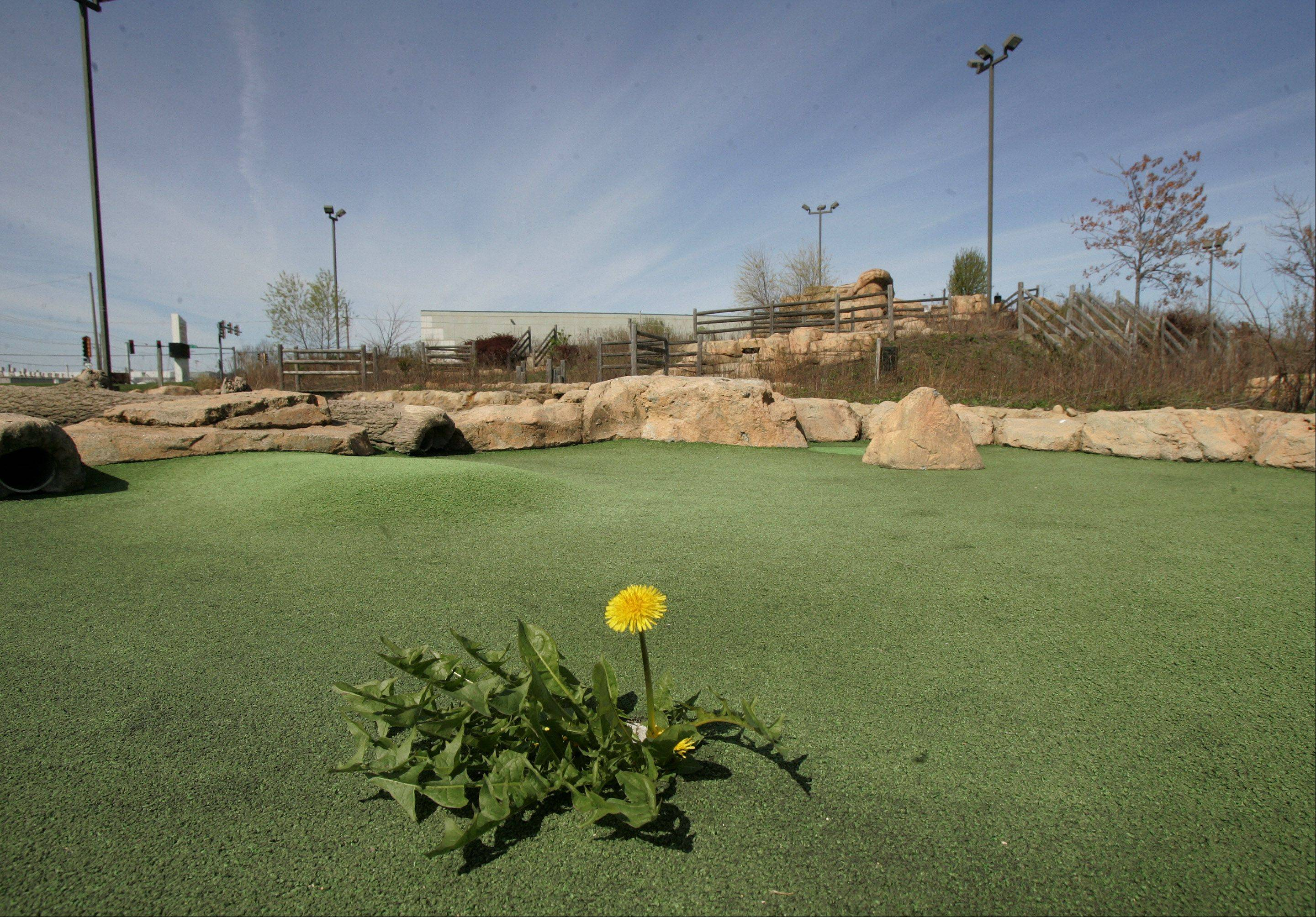 Gilbert R. Boucher II / gboucher@dailyheraldThe miniature golf course is falling apart and overrun with weeds as it sits idle at the Libertyville Sports Complex.