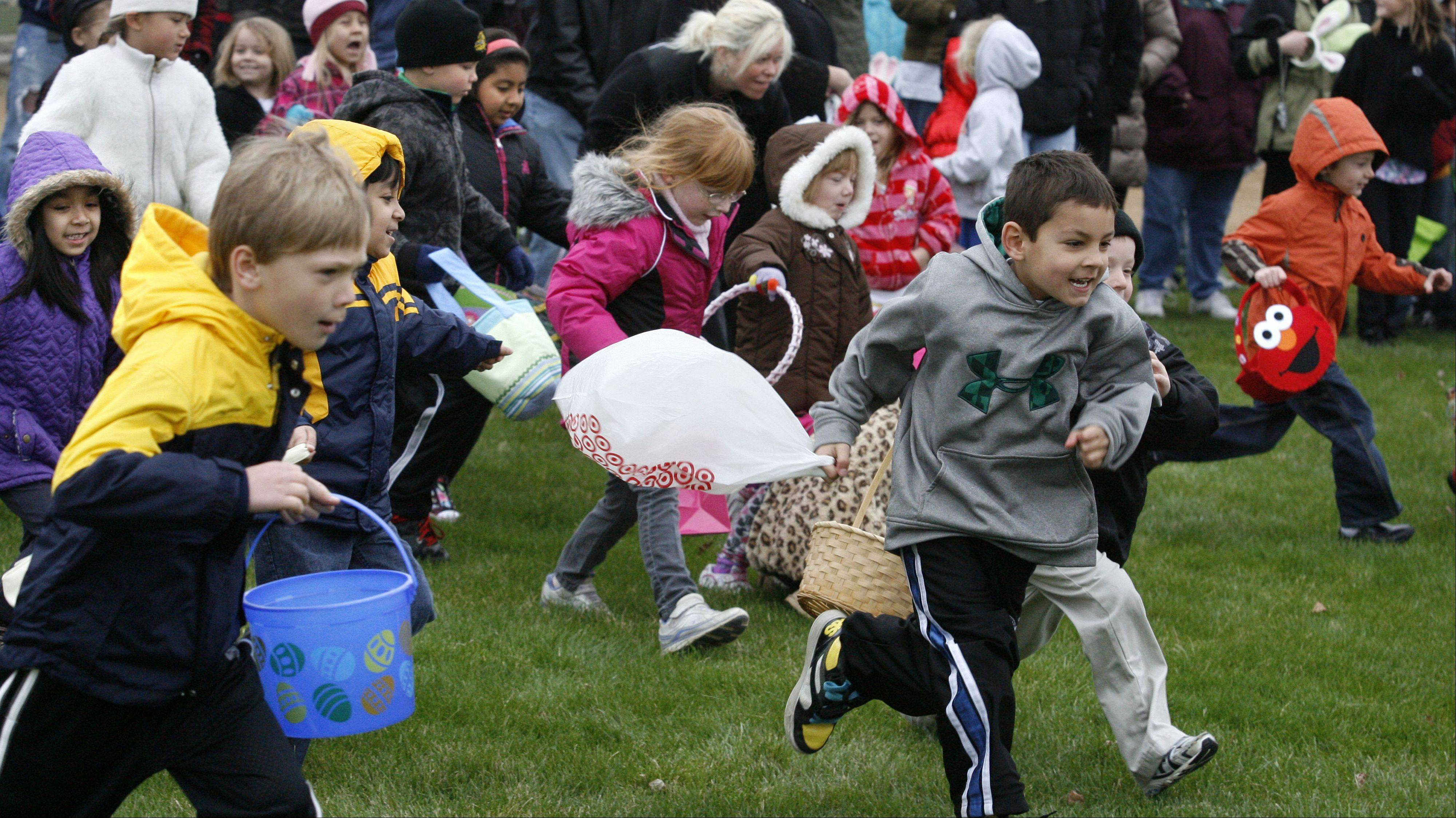 About 200 children races for candy and filled plastic eggs in three age groups at Wauconda Park District's annual Easter egg hunt at Cook Park on Saturday, March 31st.
