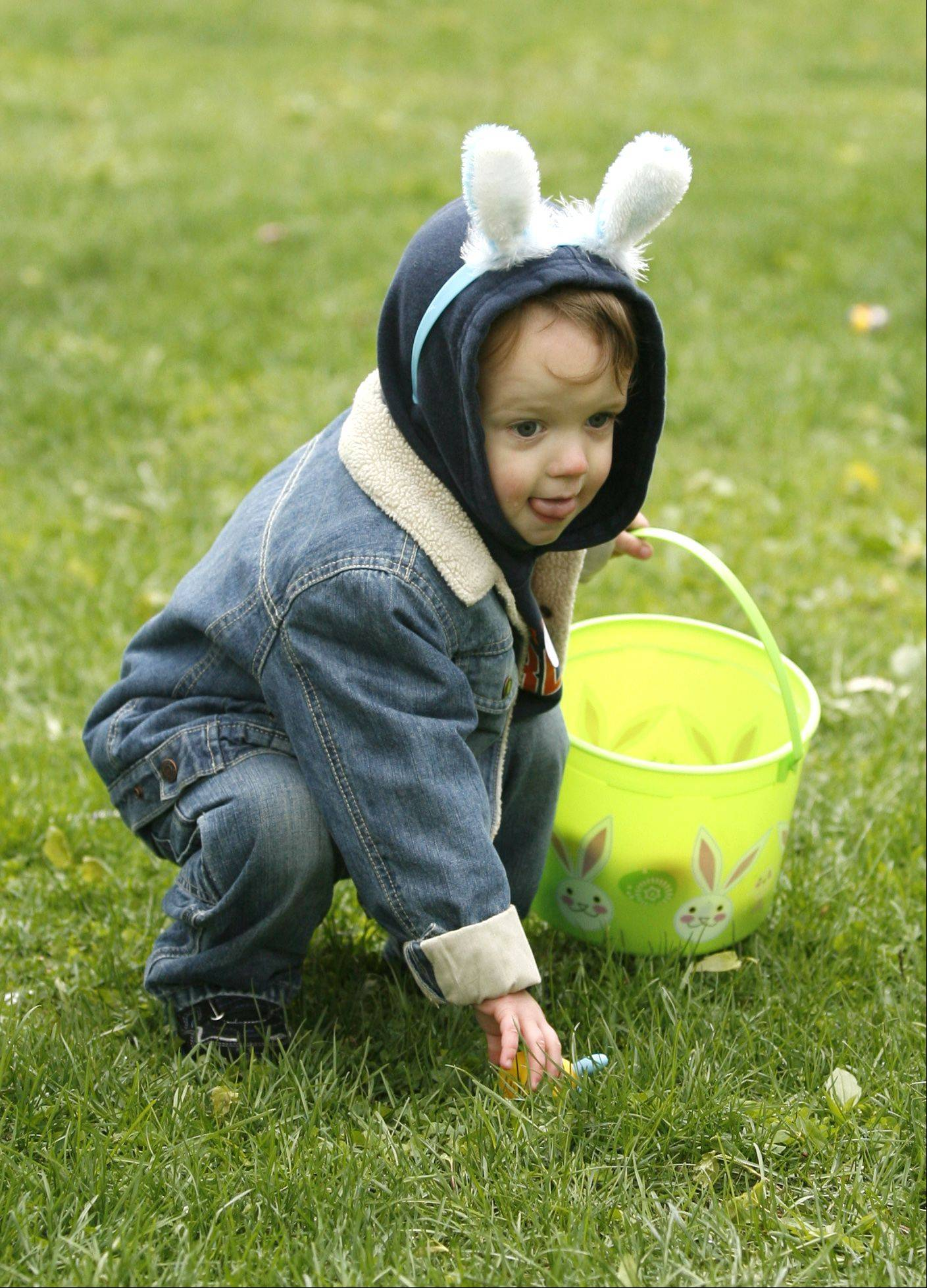 Jacob Kelley, 2, of Winfield eyes his next prize, during the Great Egg Scramble Easter egg hunt at the Cosley Zoo in Wheaton.