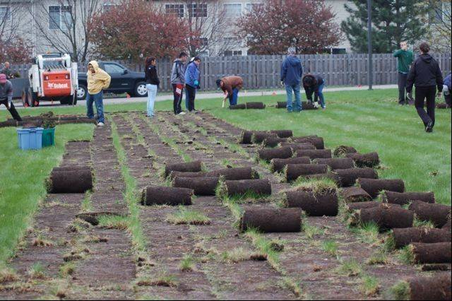 Nearly 50 opportunity center volunteers were out on a Saturday morning to pull up sod for the new Roots Garden.
