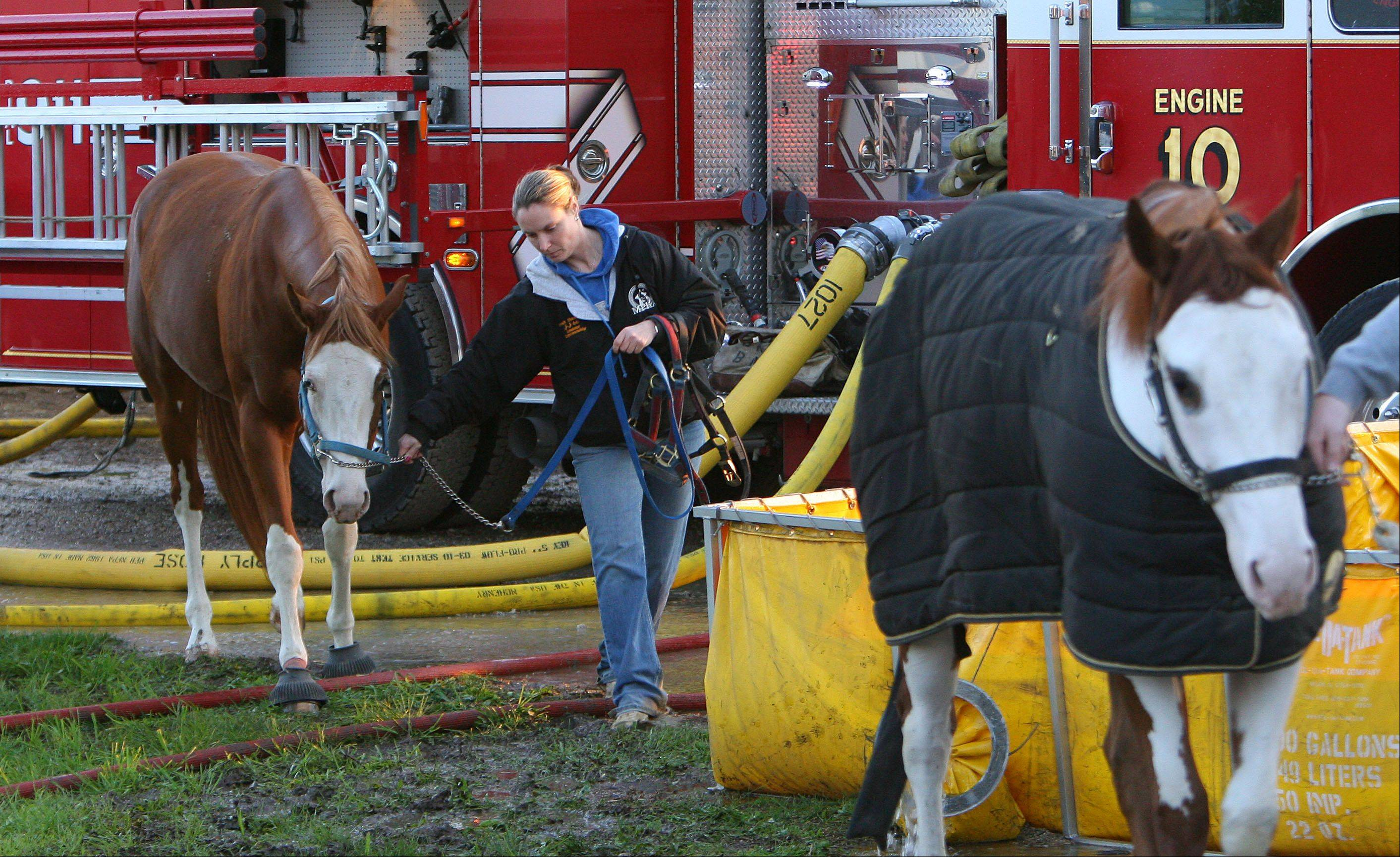 Horse owners maneuver through fire engines as they try to remove their horses from the Black Tie Stables in McHenry after a fire destroyed the facility Wednesday evening.