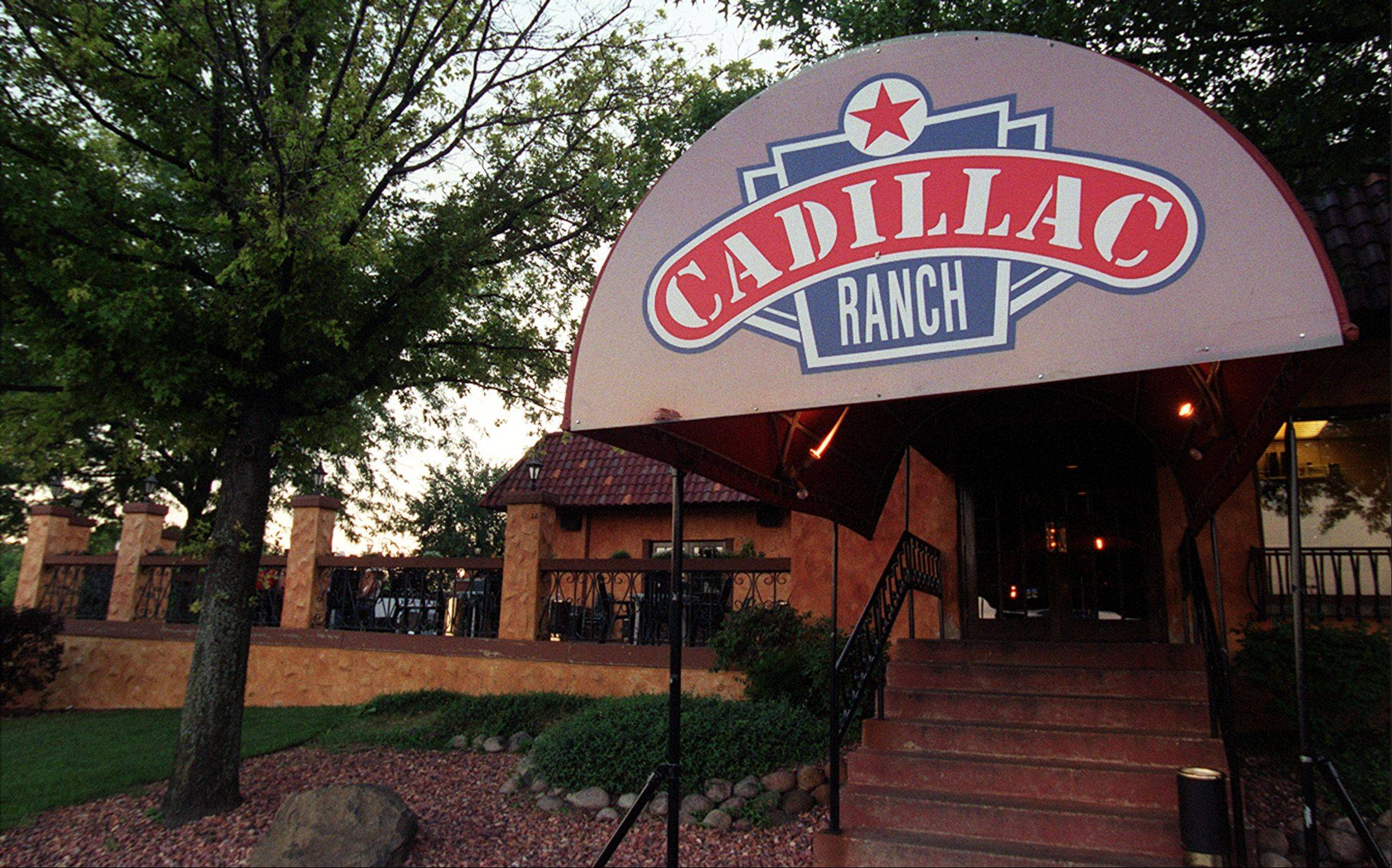 This is the entrance to Cadillac Ranch in Bartlett.