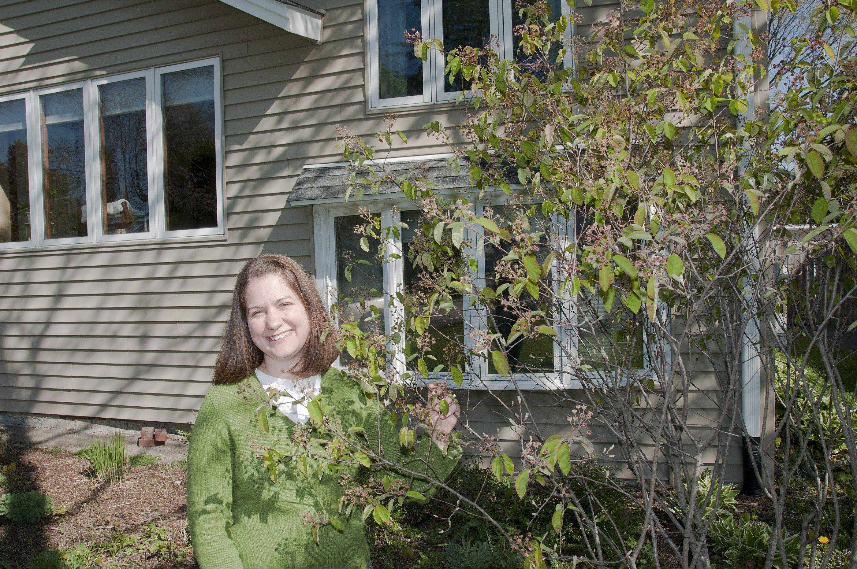 Emily Prasad of Lombard is promoting the benefits of eating food grown locally by starting a co-op called Eat Local DuPage and growing several edible plants in her yard, including this serviceberry shrub.