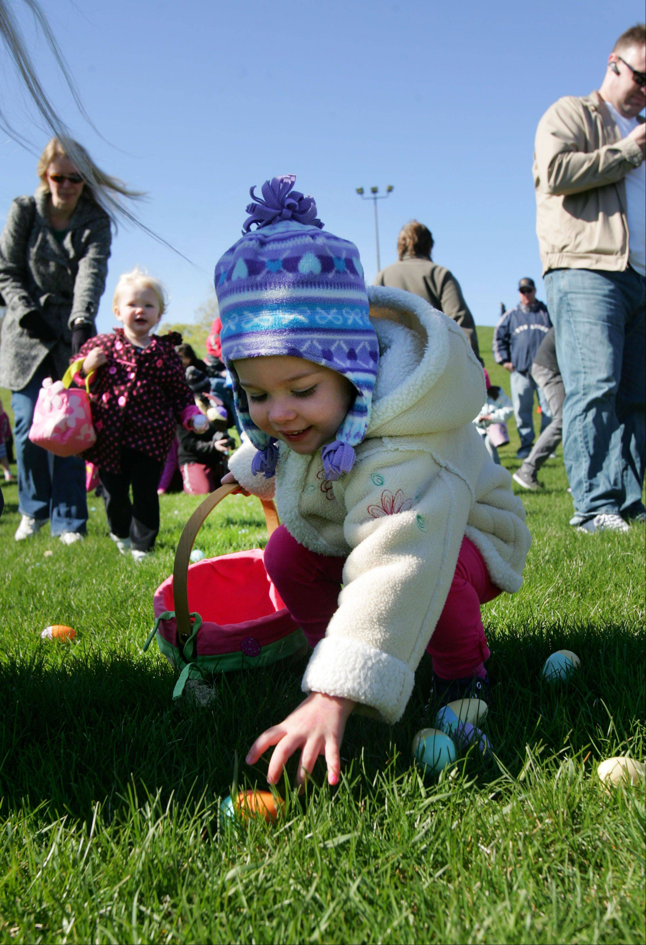 2-year-old Aly Hughes of Round Lake participates in an easter egg hunt at Keith Mione Community Park in Mundelein Friday Morning.