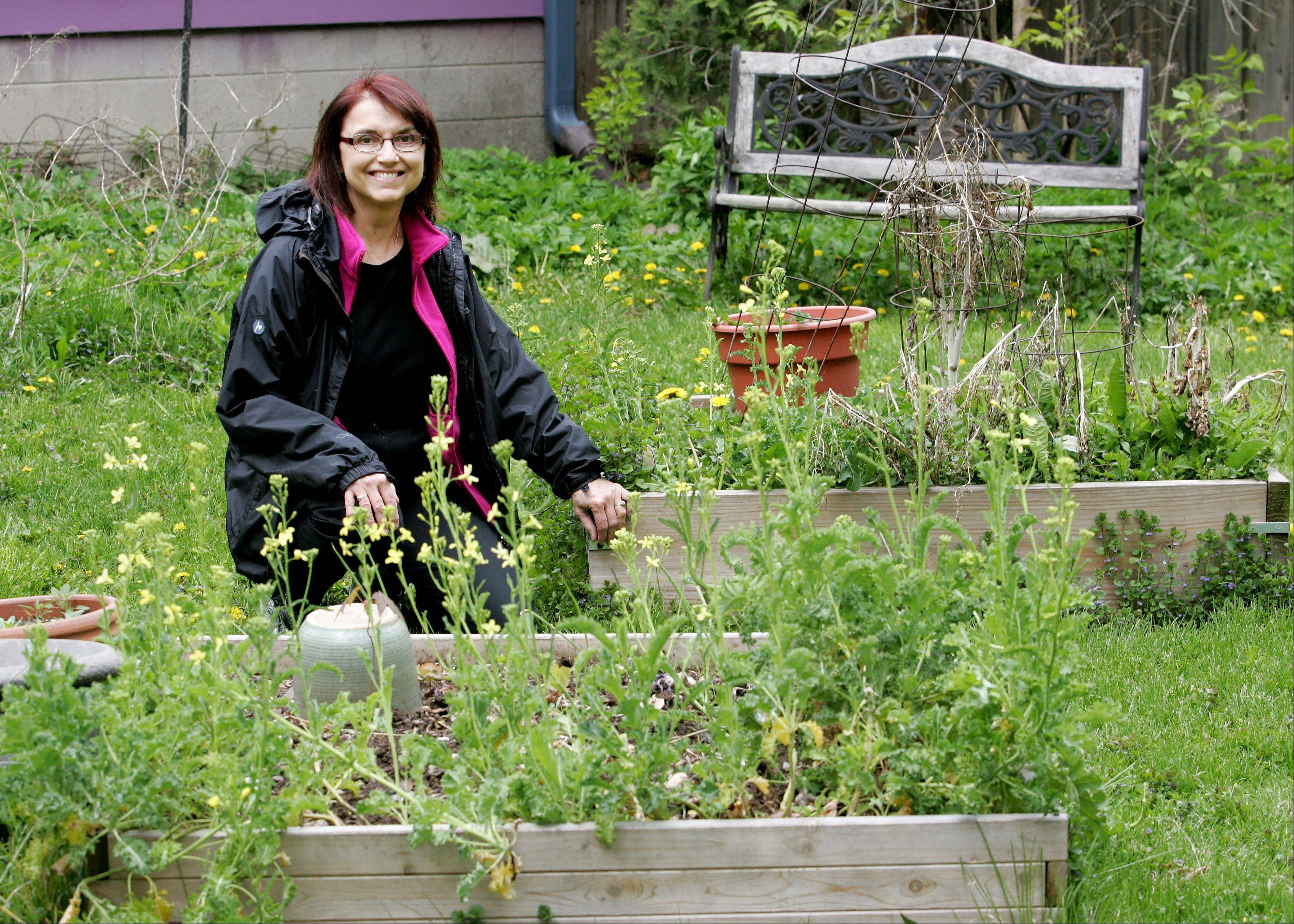 Gardening in her backyard and cooling her home with window air conditioners instead of a central system are some of the ways Mavis Bates of Aurora shows her passion for conservation. Bates is the founder of Aurora Green Lights and Aurora Green Fest.