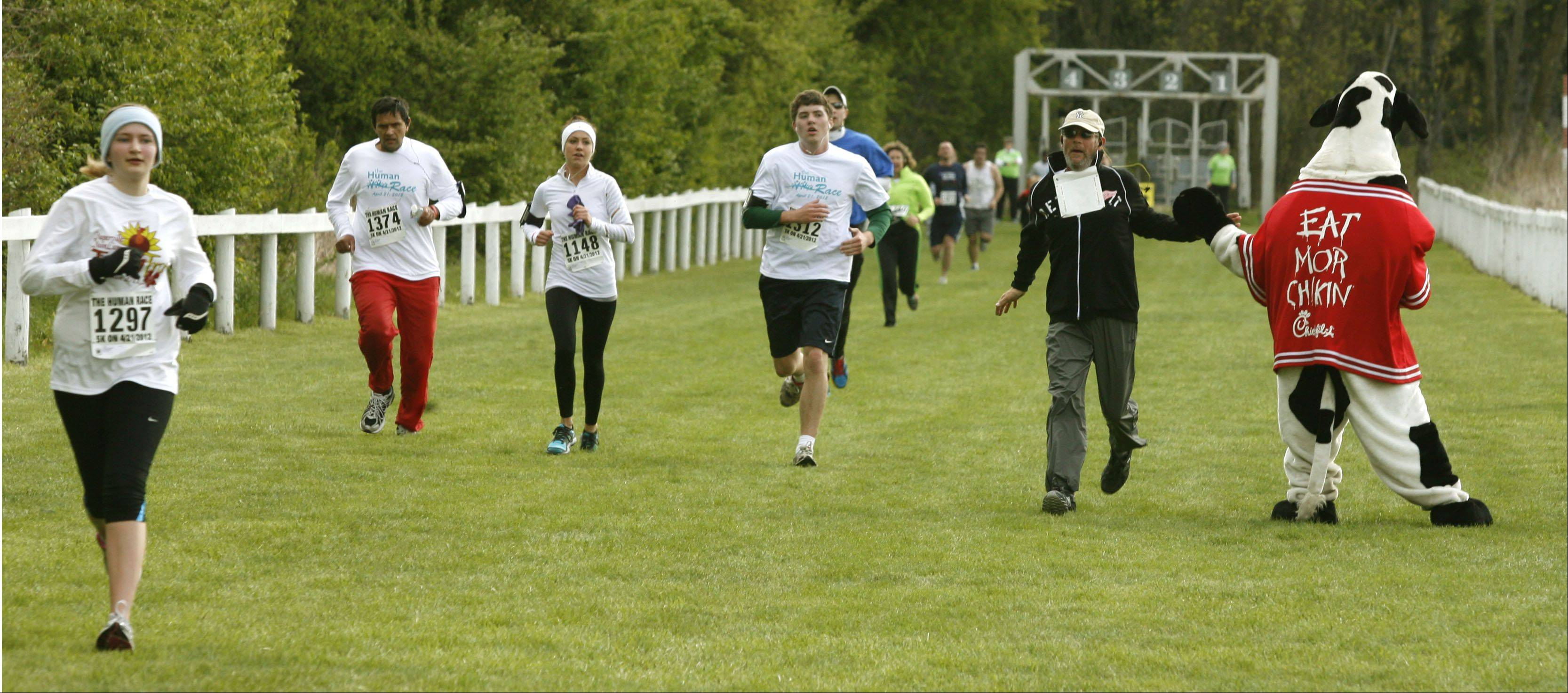 Running along the equestrian track at Danada Forest Preserve in Wheaton, race participants Saturday head to the finish line of the first Human Race, a 5K run and 2-mile walk hosted by Giving DuPage.