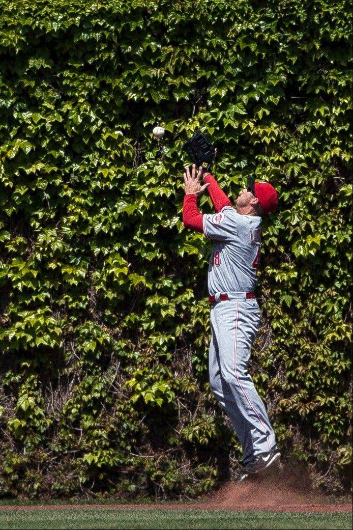Cincinnati Reds left fielder Ryan Ludwick can't catch a ball off the bat of Starlin Castro, who ended up with a triple.