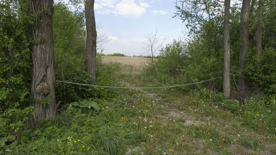This land on the west side of Klein Road at West Branch Forest Preserve near Bartlett is the largest of 43 properties bought by the DuPage County Forest Preserve with money from a $68 million tax increase.
