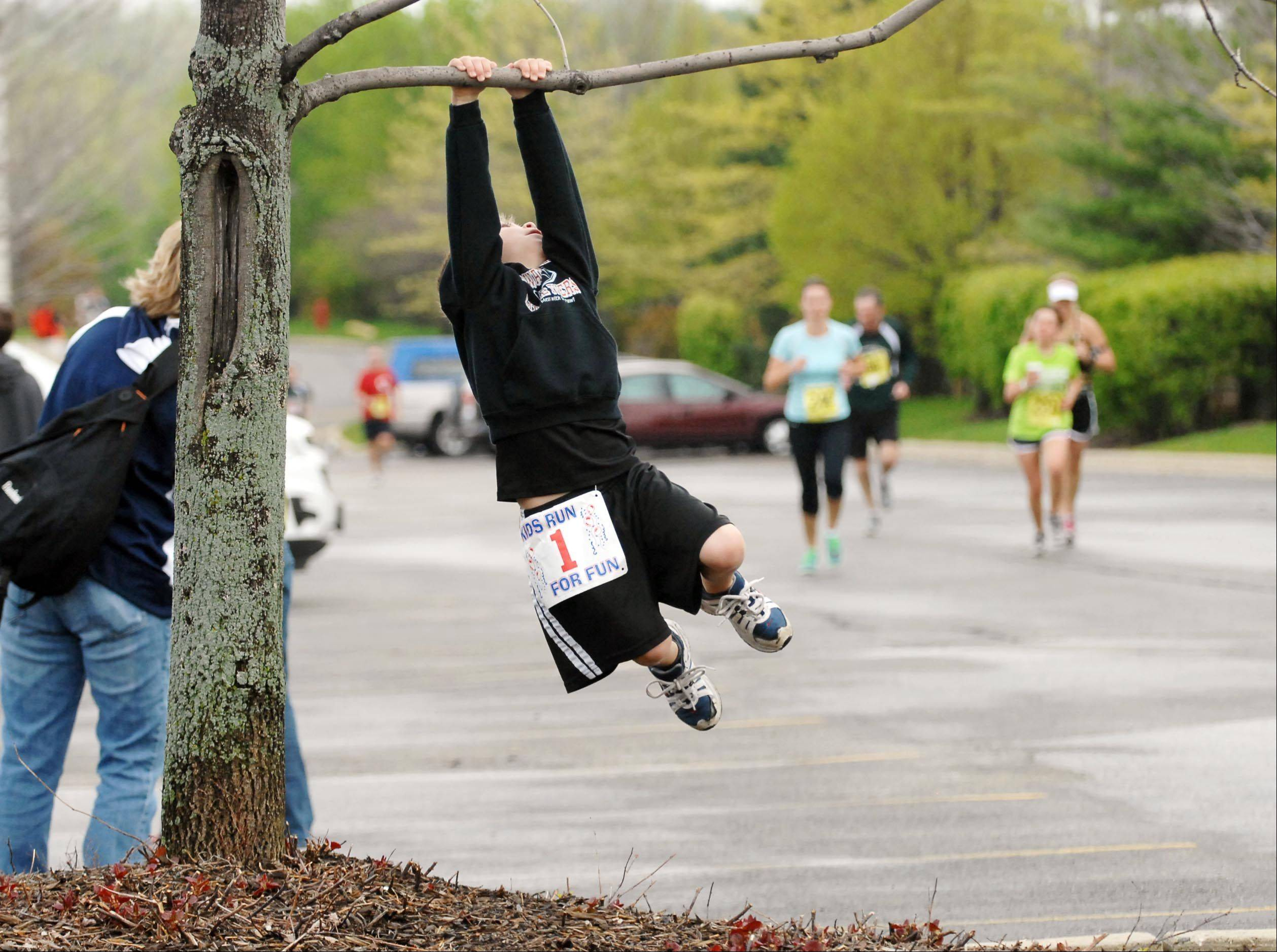 Zach Zuzzio of Lake in the Hills swings on a low branch as runners approach the last corner of Sunday morning's Run Through The Hills 5K and 10K races in Lake in the Hills. The six-year-old was with his mom Michelle. He ran in the kids race while his father ran the 10K.