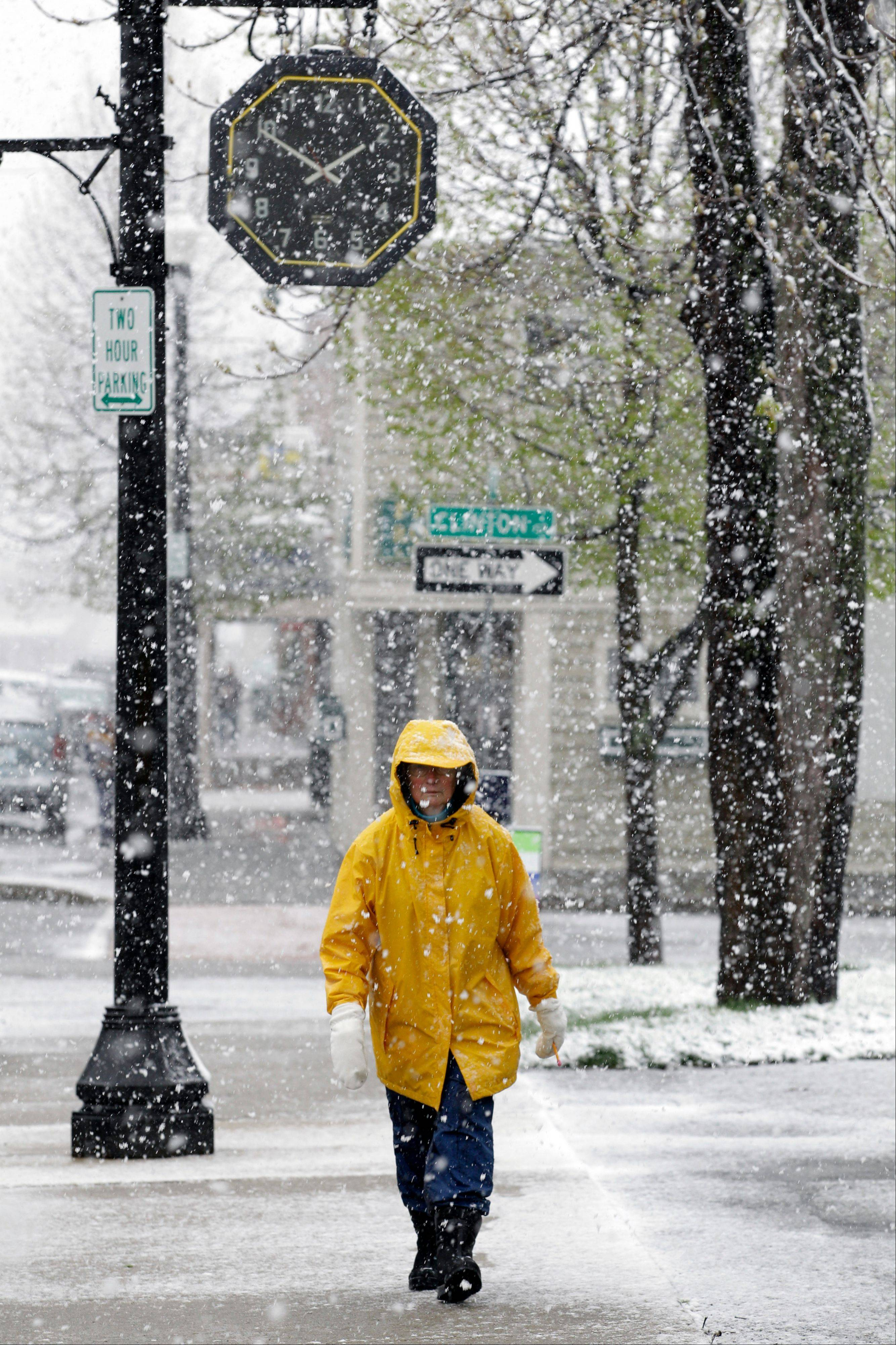 Fran Kowalik takes a walk during a spring snowstorm in Akron, N.Y., Monday, April 23, 2012. A spring nor'easter dumped up to six inches of snow east of Lake Ontario on Monday, and parts of western New York could see more than a foot of snow before the late-season storm moves on.