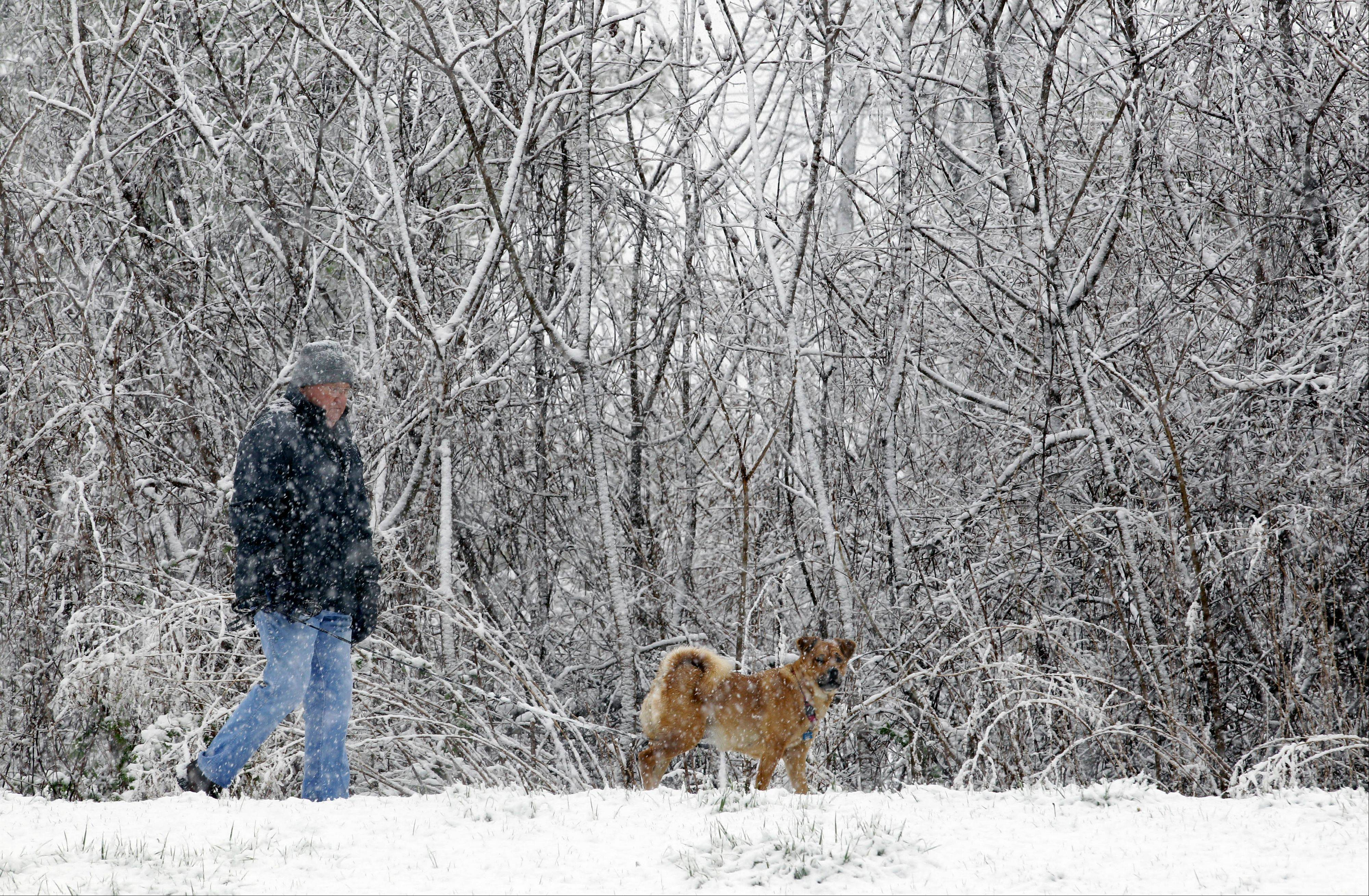 Don Buckley takes his dog Gracie for a walk during a spring snowstorm in Akron, N.Y., Monday, April 23, 2012. A spring nor'easter dumped up to six inches of snow east of Lake Ontario on Monday, and parts of western New York could see more than a foot of snow before the late-season storm moves on.