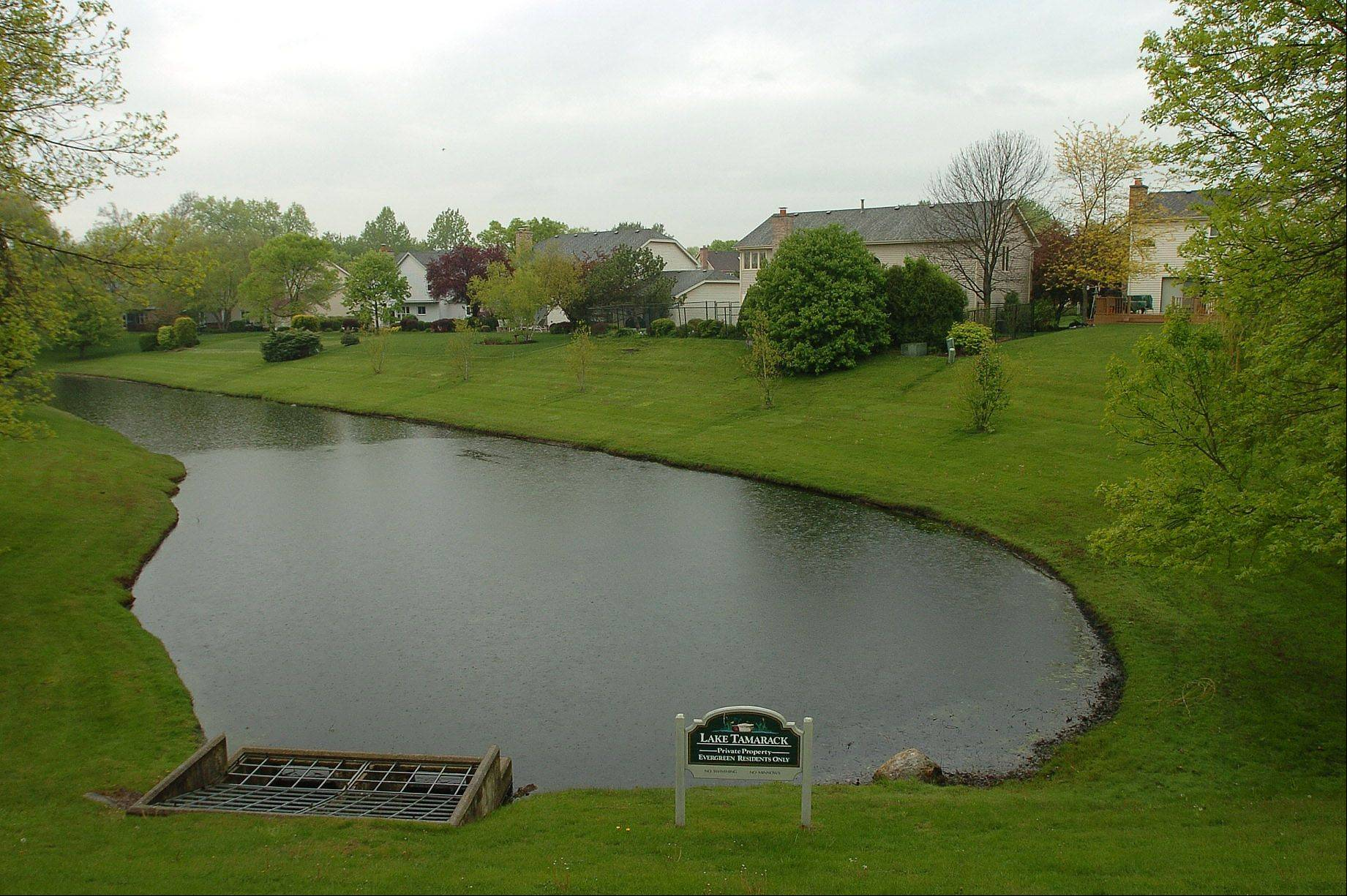 The five-acre Lake Tamarack is located within the Evergreen neighborhood.