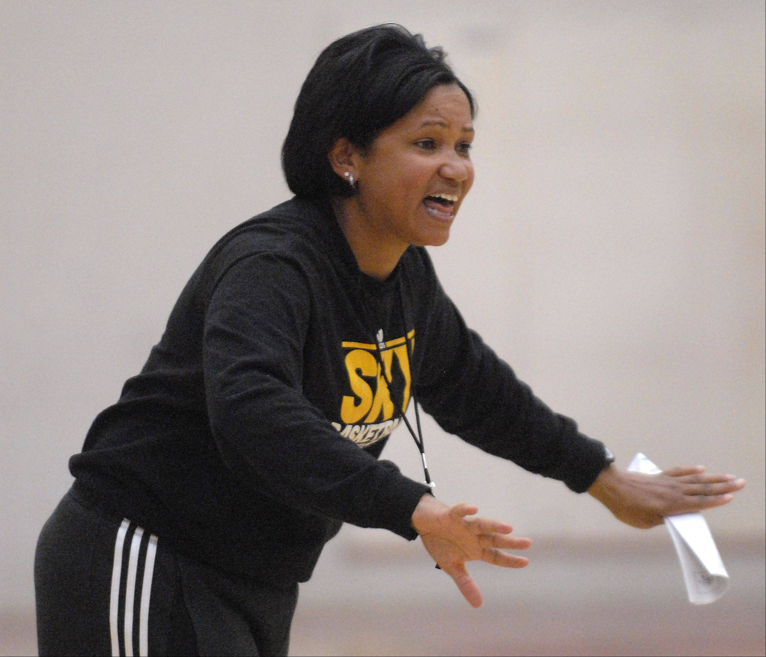Chicago Sky head coach and general manager Pokey Chatman added some significant pieces to the team for the 2012 season. The Sky hosts the Indiana Fever Friday at Allstate Arena.