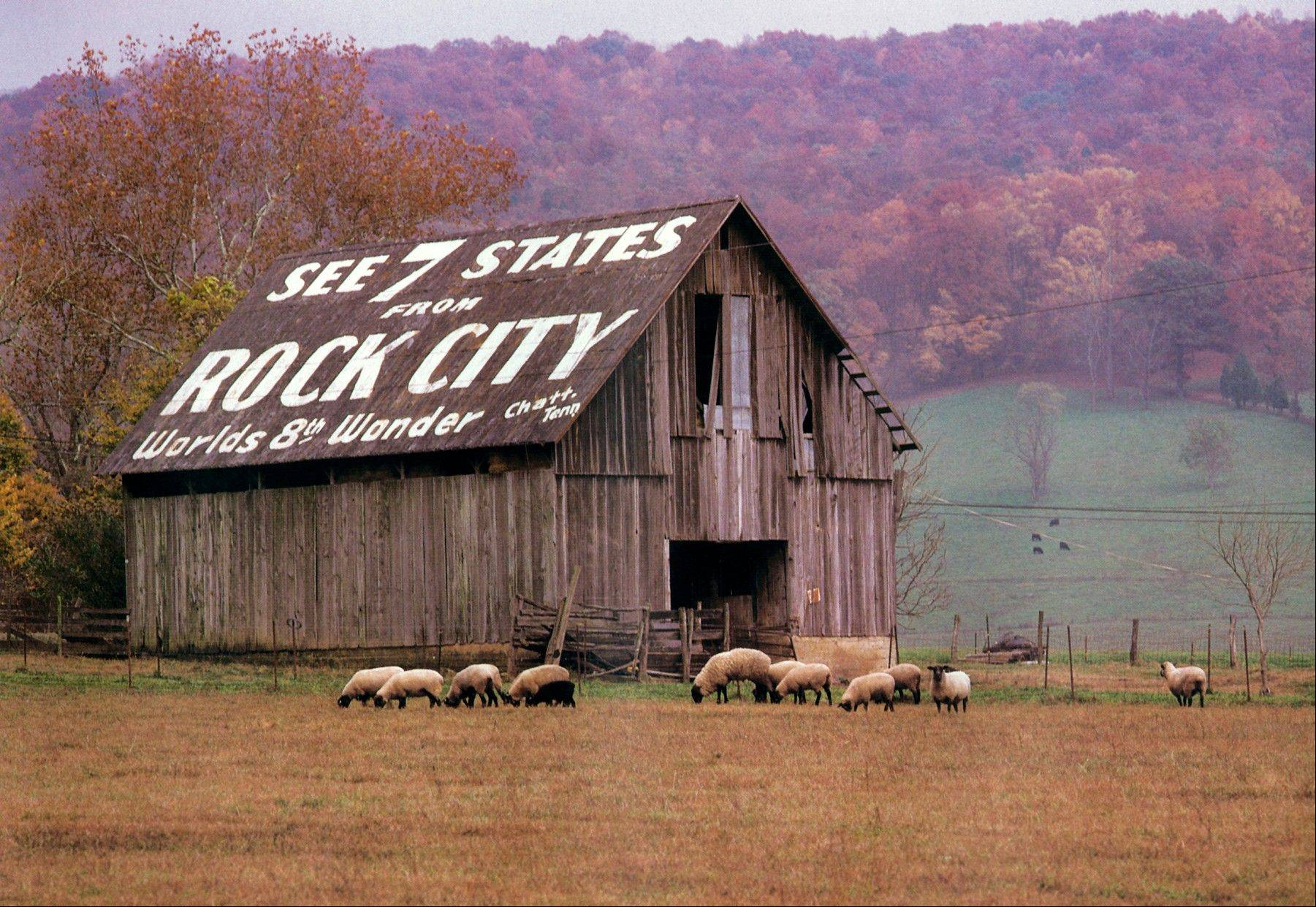 An advertisement for Rock City painted on the side of a barn in Cumberland County, Tenn., in 1996 is one of 900 barn ads originally painted by Clark Byers beginning in the 1930s.