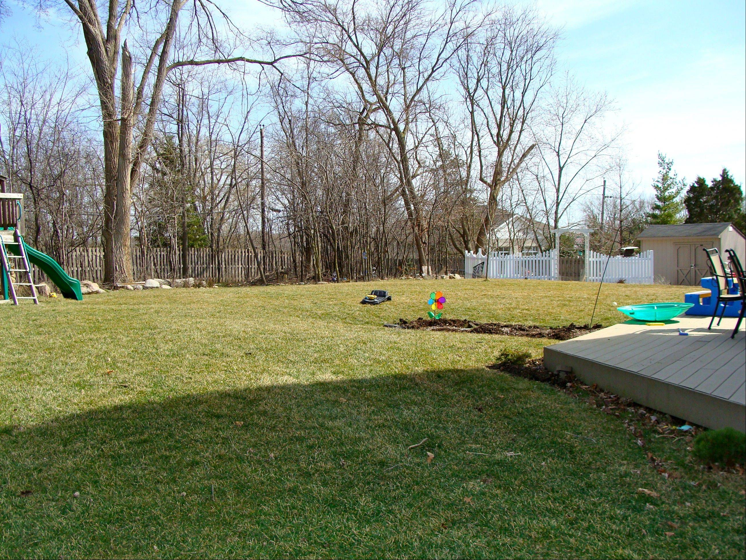 Backyard makeover Week 5: Staycation -- who needs Disney?