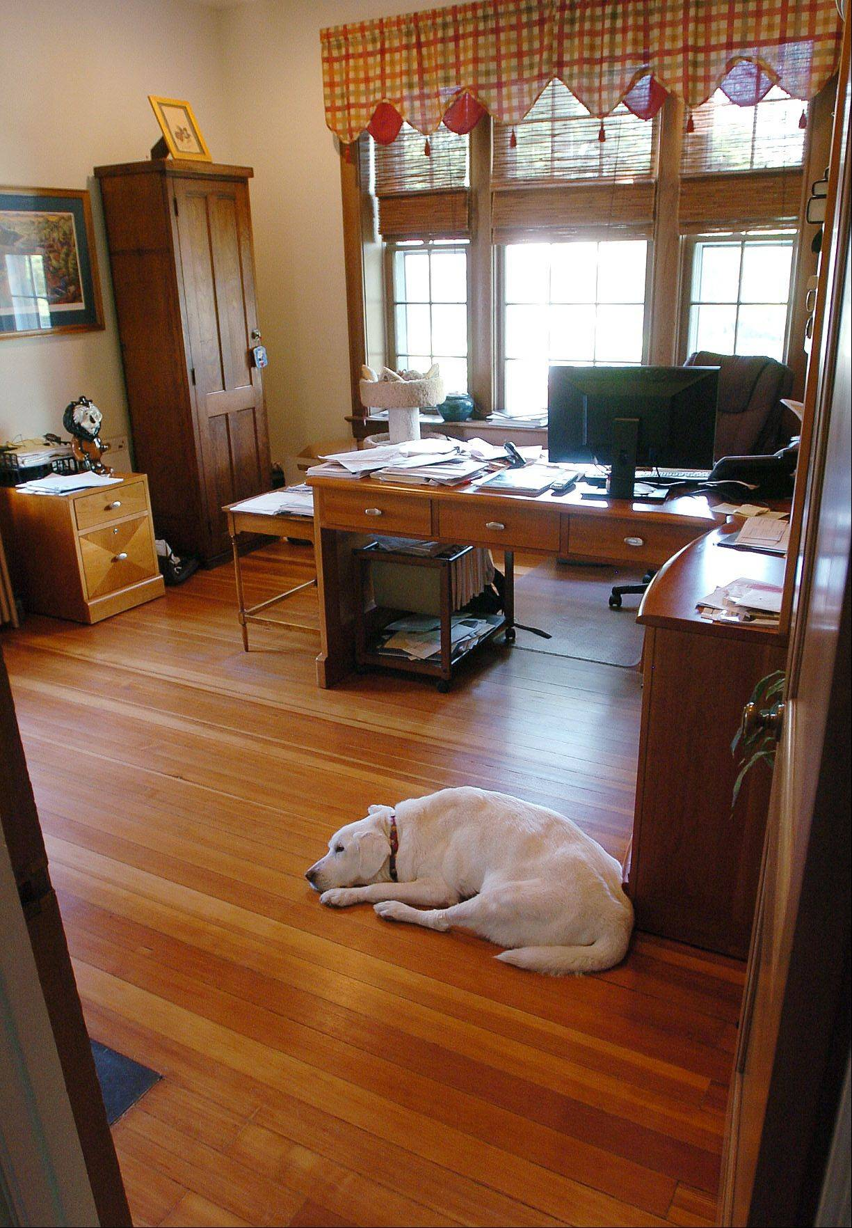 Libby hides out in Daisy Kessler's office.