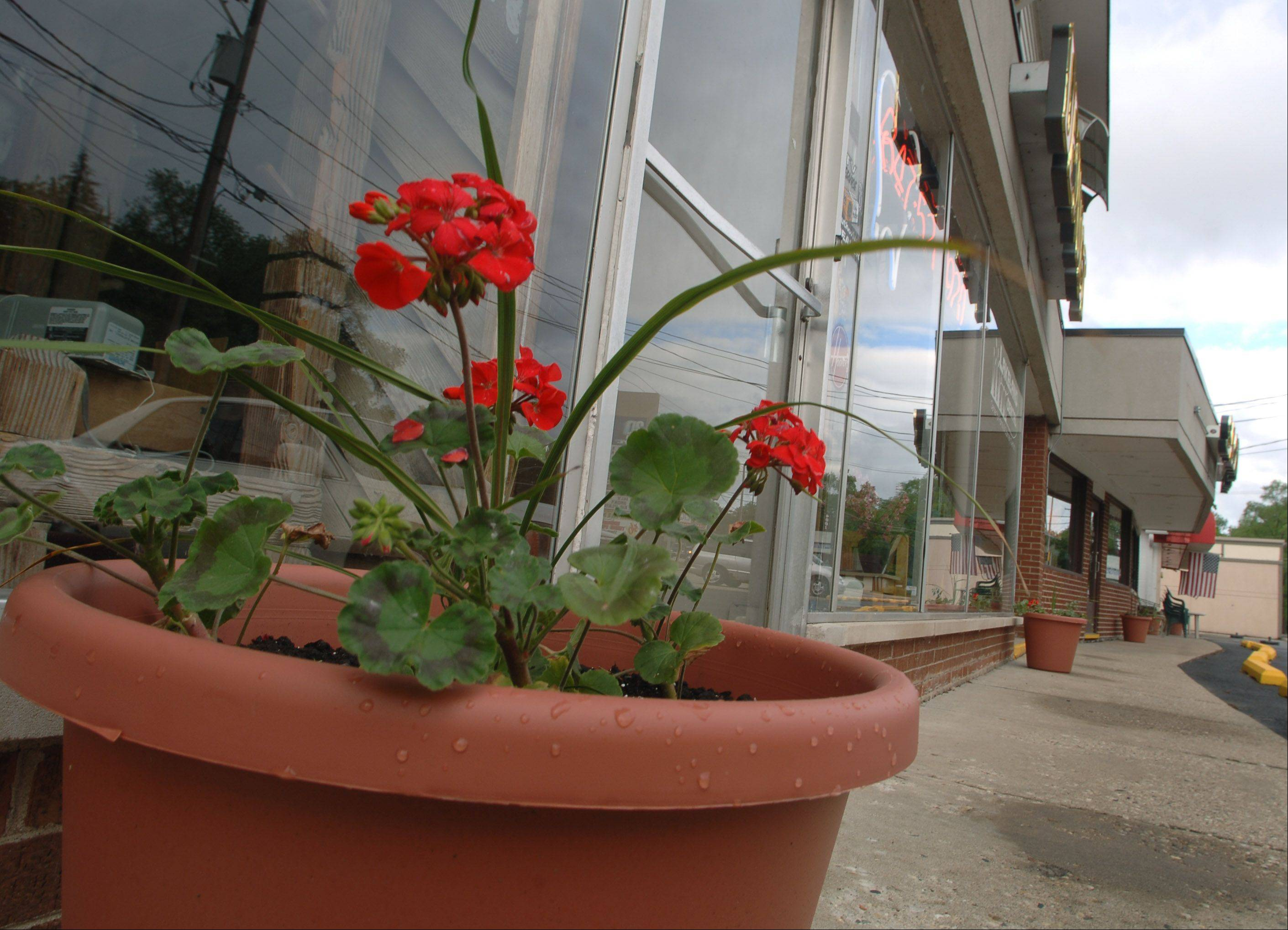"Flower pots sit outside Any Kuts barber shop and Lakeland Dental in Island Lake, part of the village's ""Put Some Spring in Your Business"" campaign."