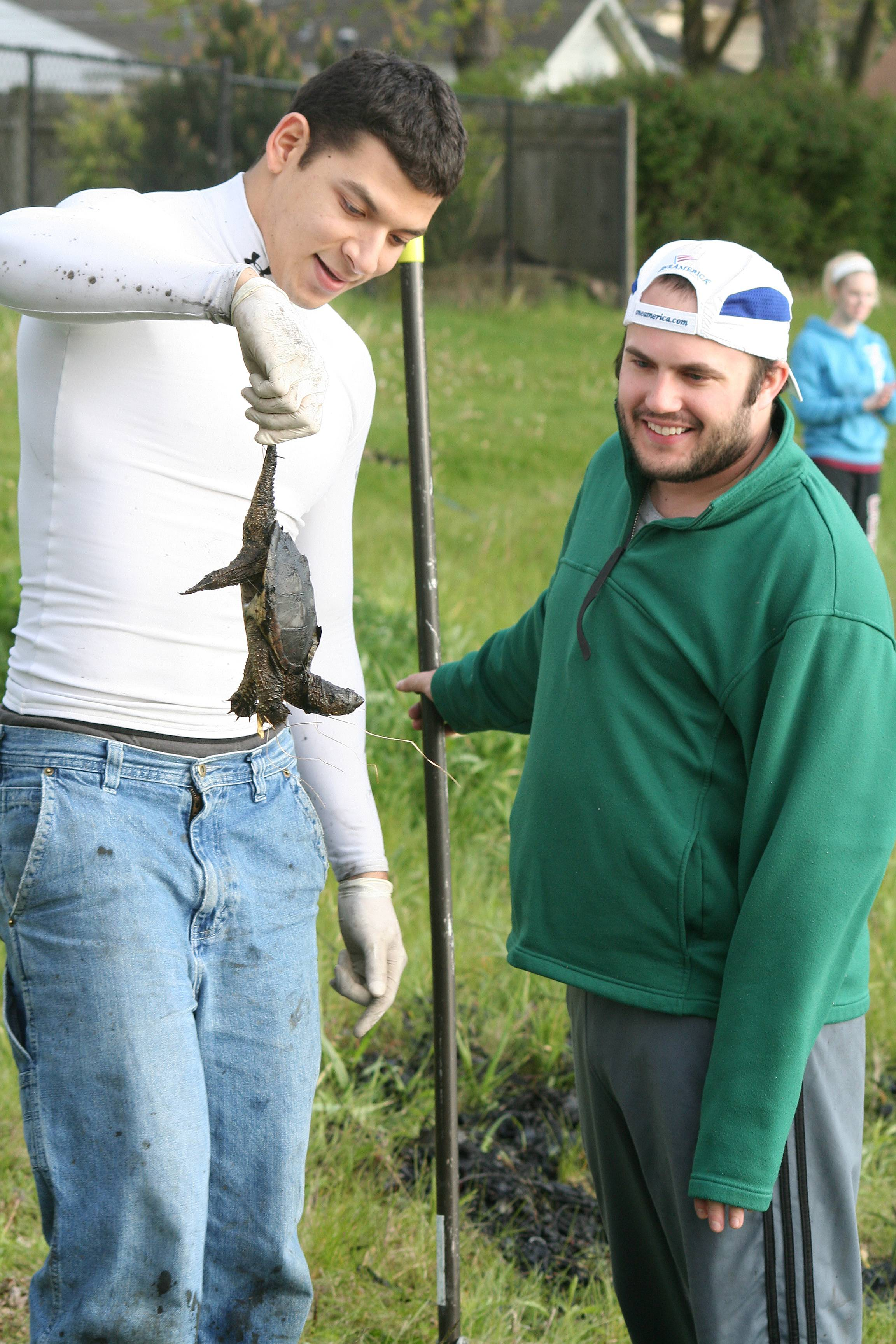 Andre Baker shows one of the turtles he found to fellow Concordia University student, Zachary Bauknecht, while working at Prairie Lakes Park.