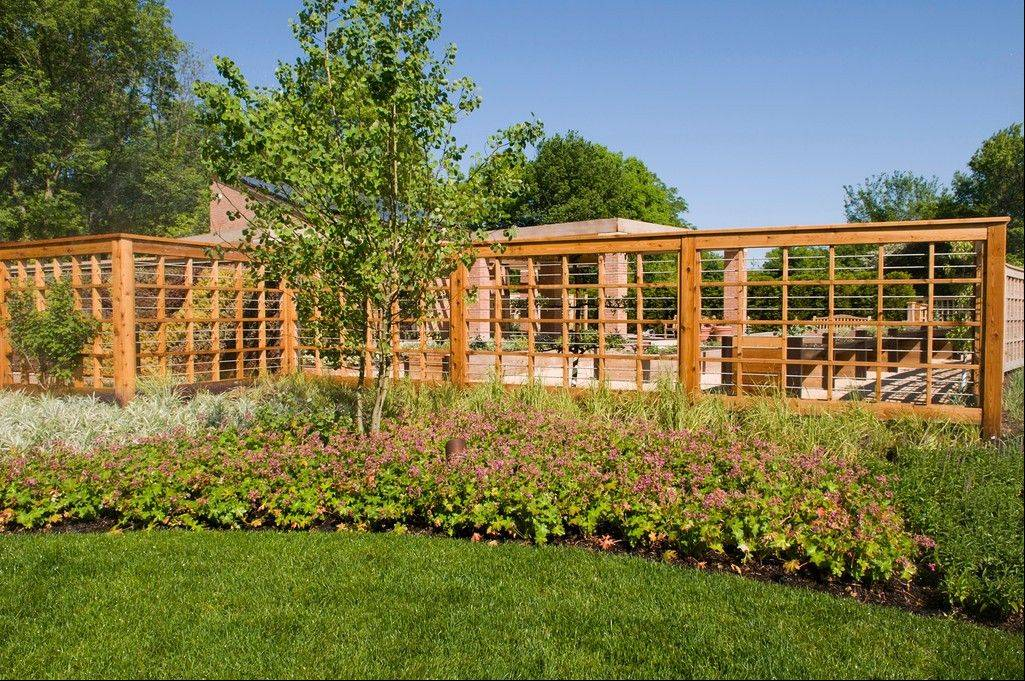 The Children's Growing Garden has opened at the botanic garden and gives kids a chance to see what vegetables, fruits and herbs look like on the vine.