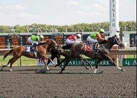 A 42-1 longshot named Better Make Money keyed a $1 JackPOT High 5 ticket worth more than $1.1 million Sunday at Arlington Park.