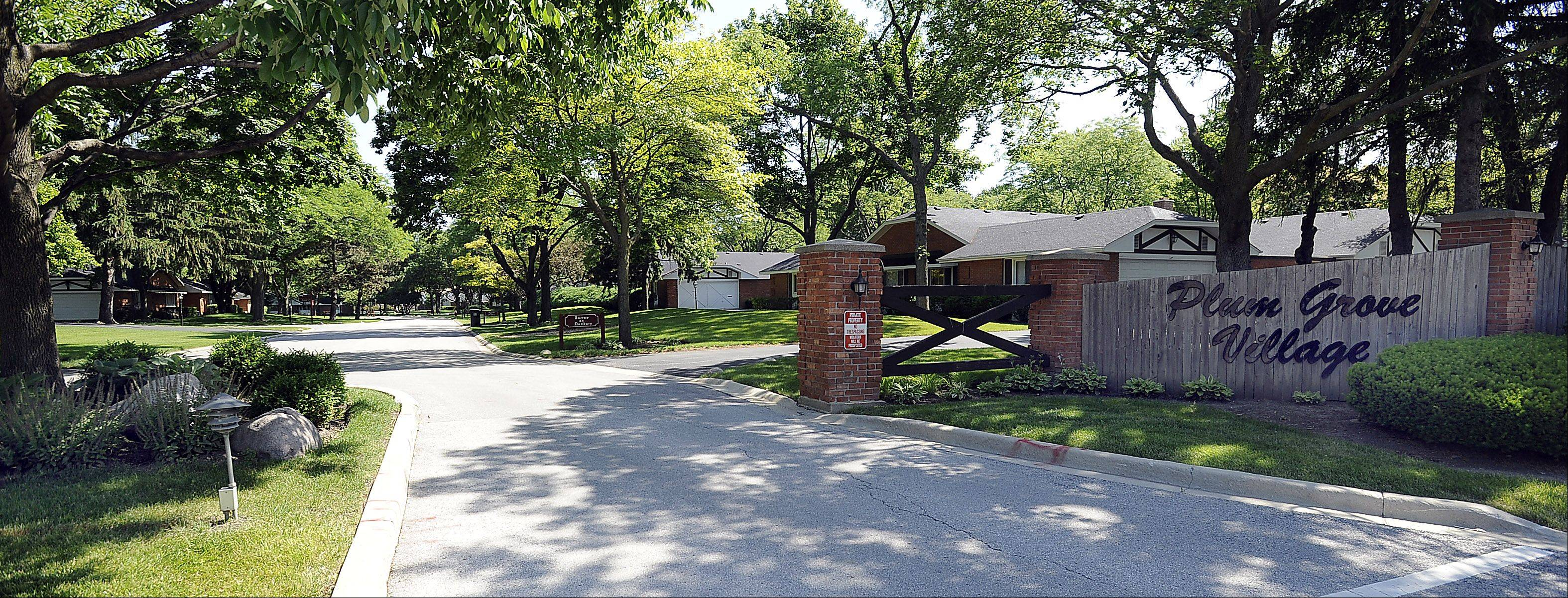The mature trees and landscaping found in Plum Grove Village makes for a serene neighborhood.