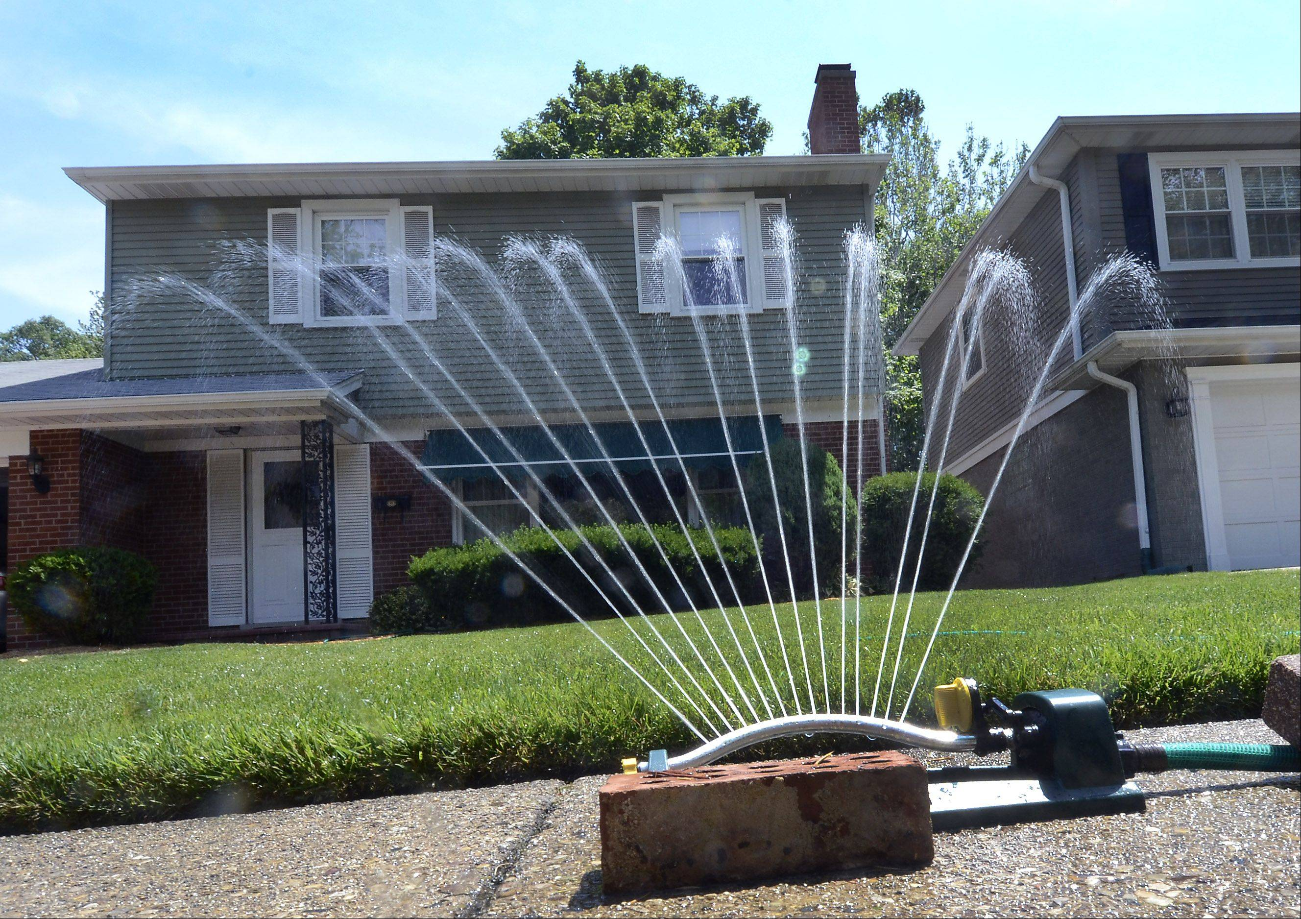 Bill Zars/bzars@dailyherald.com Some people, such as this Arlington Heights homeowner on Walnut Avenue, prefer to keep their lawns green by watering during dry spells.