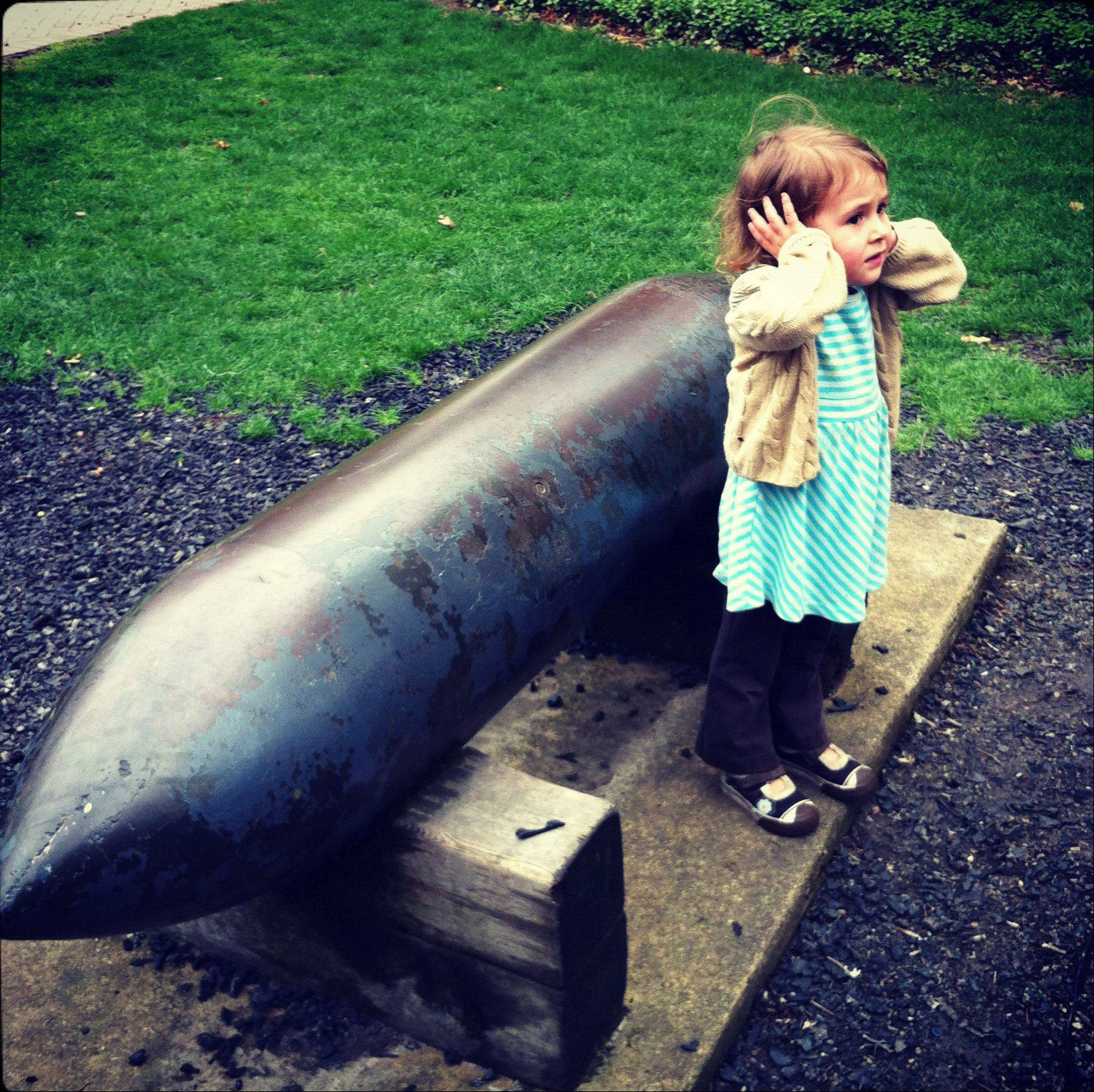 I took this picture of my daughter this past Spring on a visit to Cantigny Park. It was not posed and she must have heard something loud. I thought it captured a lot.