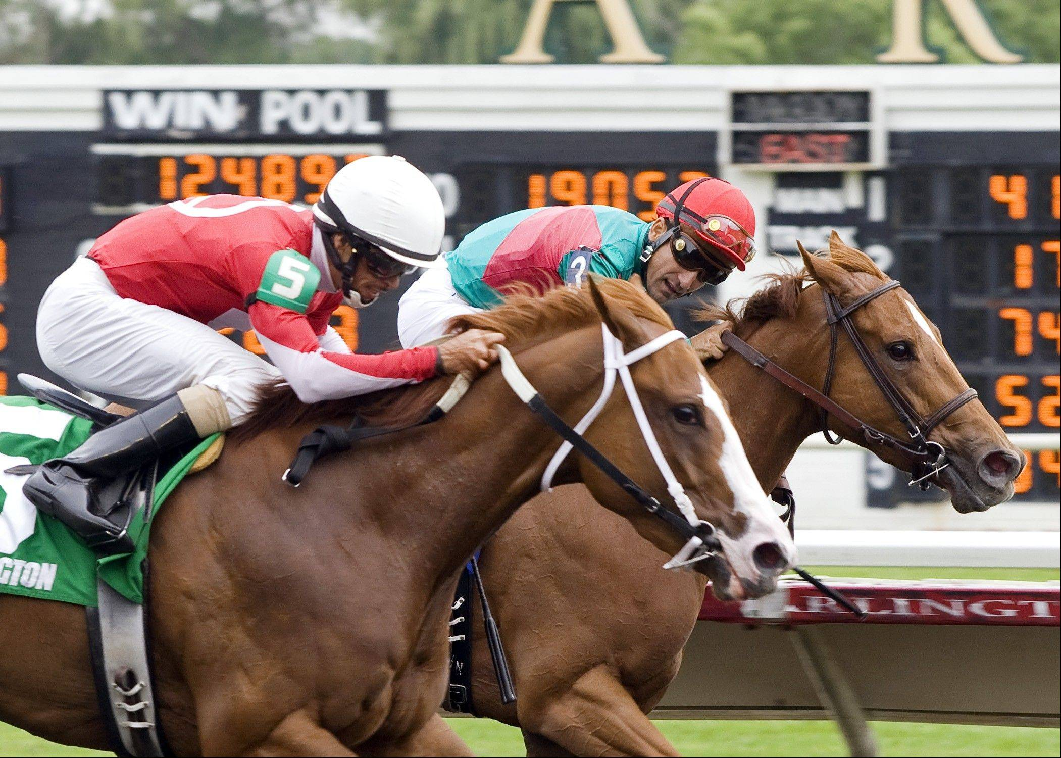 Our Lady in Red, with jockey Quincy Hamilton aboard, won last year's Purple Violet Stakes at Arlington Park. The Prairie State Festival returns Saturday with its six stakes races. The Purple Violet Stakes is a one-mile Polytrack race for 3-year-old fillies.