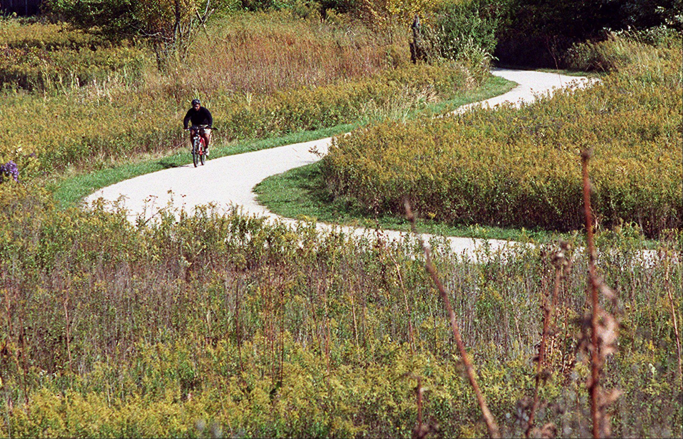 Part of Springbrook Prairie Forest Preserve in Naperville is one of two areas up for Illinois Nature Preserve status. If granted, the designation would offer another layer of protection to the natural areas.