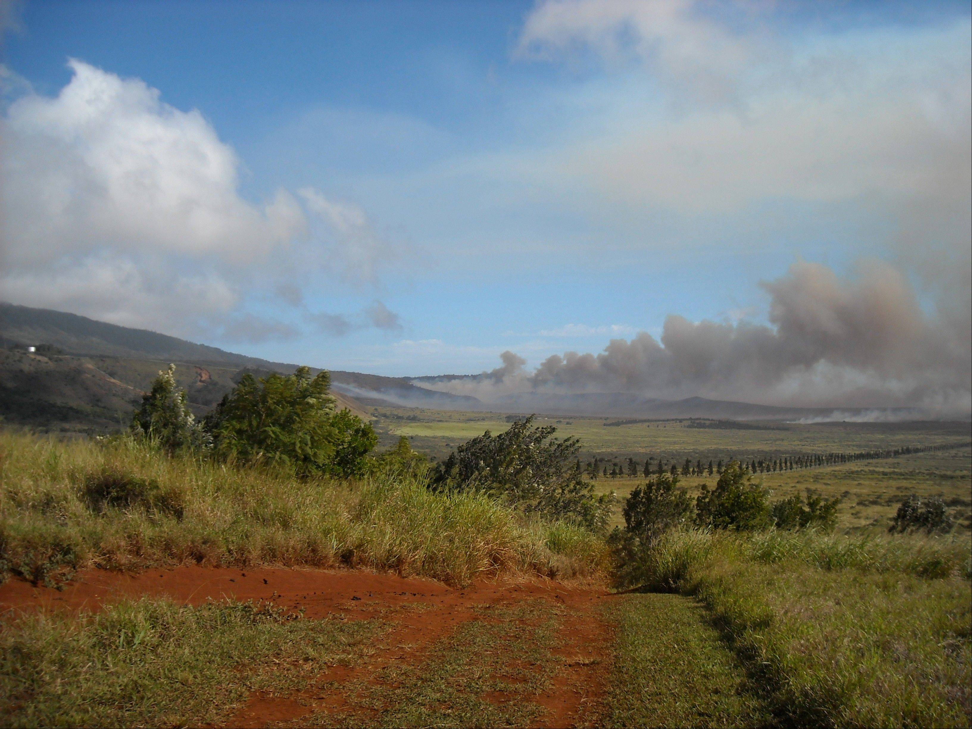 In this 2008 photo, a brush fire burns on the island of Lanai, Hawaii. Oracle Corp. CEO Larry Ellison has reached a deal to buy 98 percent of the island of Lanai, Gov. Neil Abercrombie said Wednesday, June 20, 2012.