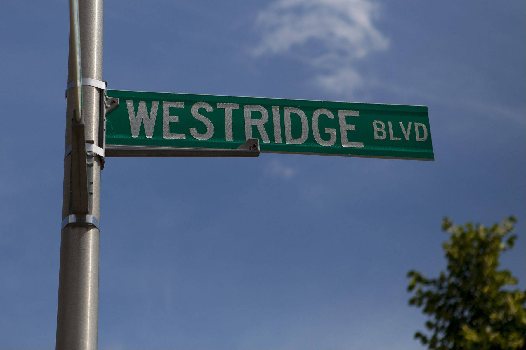 WestRidge Boulevard neighborhood in Bartlett.