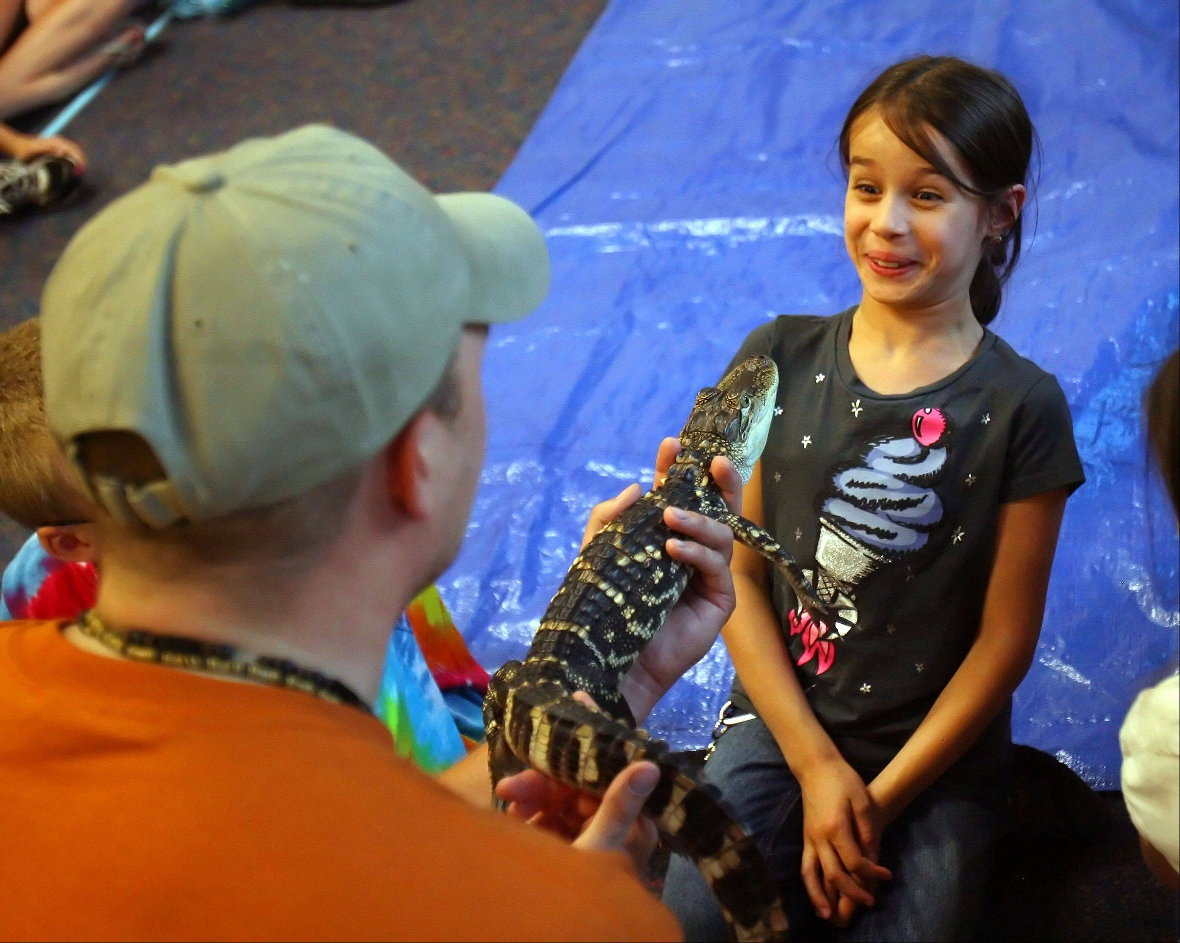 8-year-old Shylah Guzman of Mundelein comes face to face with an American alligator as Gavin Brink from the Wildlife Discover Center in Lake Forest brought nocturnal animals to Fremont Public Library Monday night in Mundelein.