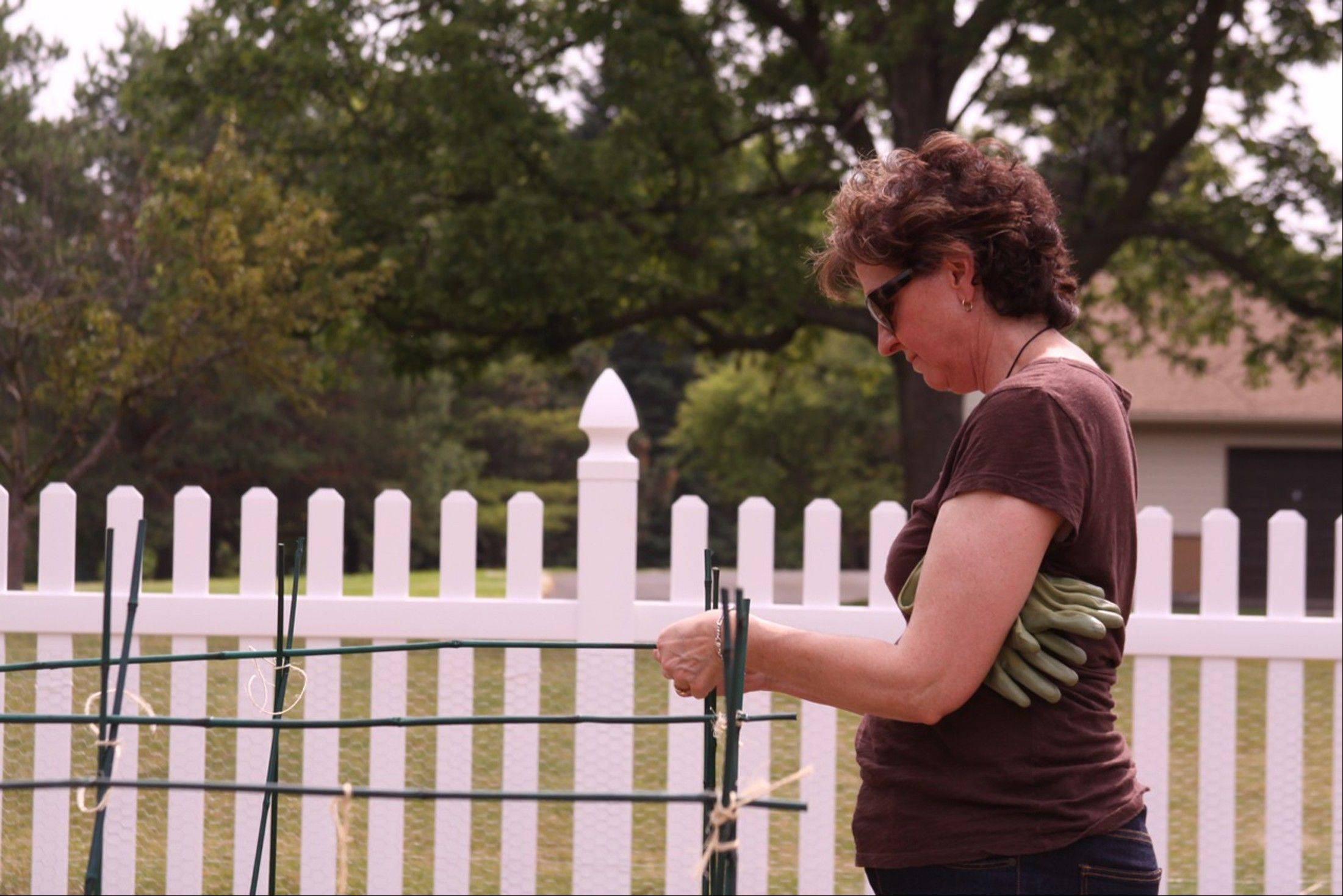 Viatorian Associate Joan Sweeney of Arlington Heights works on her plot.