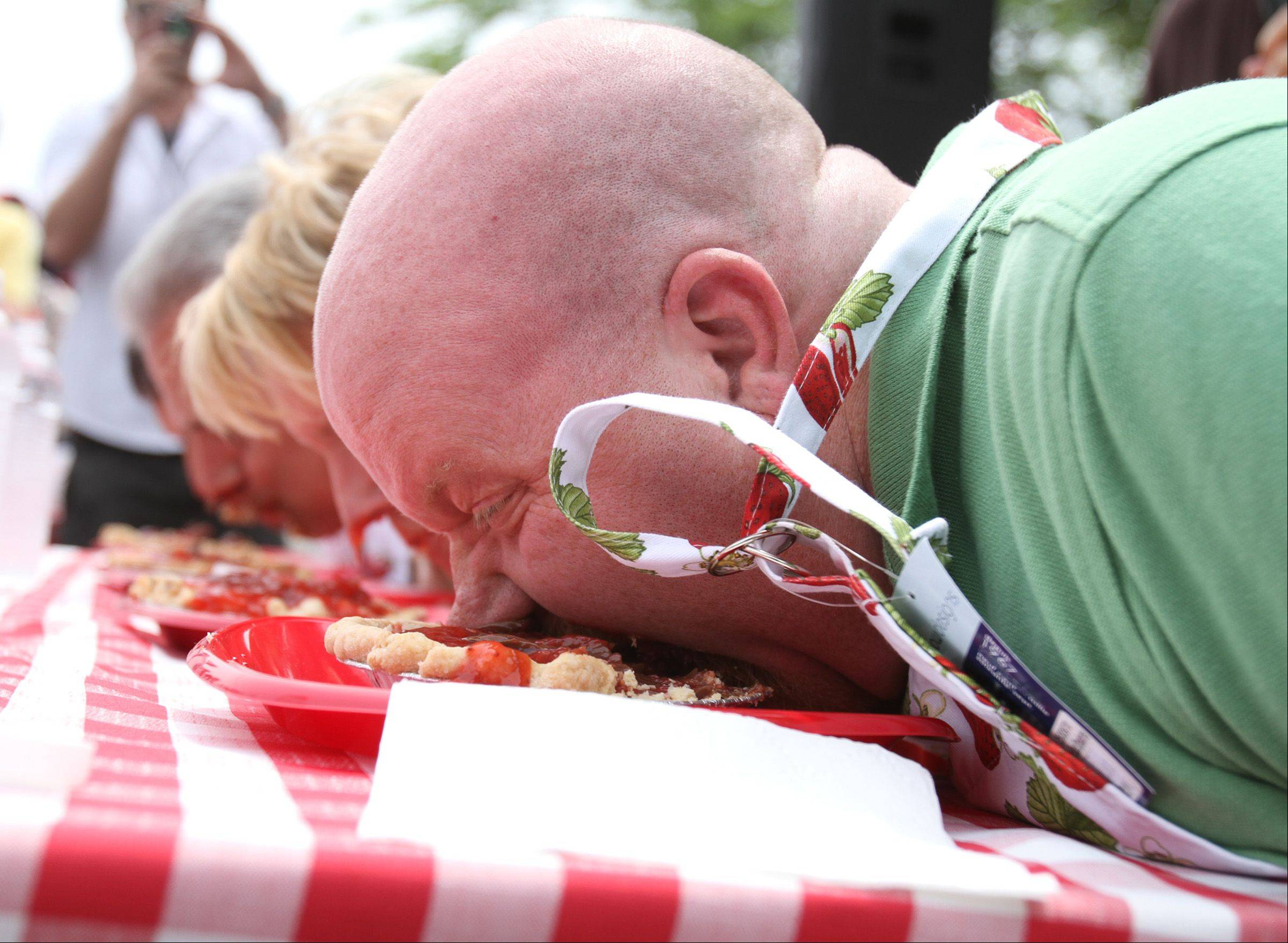 With their hands tied behind their backs, Daily Herald reporter Jake Griffin, foreground to background, Maria Rodriguez, Long Grove Village president, Ron Bernardi representing Sunset Foods, and John Garcia, ABC 7 anchor, compete in the celebrity division of Long Grove's pie-eating contest Saturday. Strawberry Fest continues 10 a.m. to 6 p.m. Sunday.