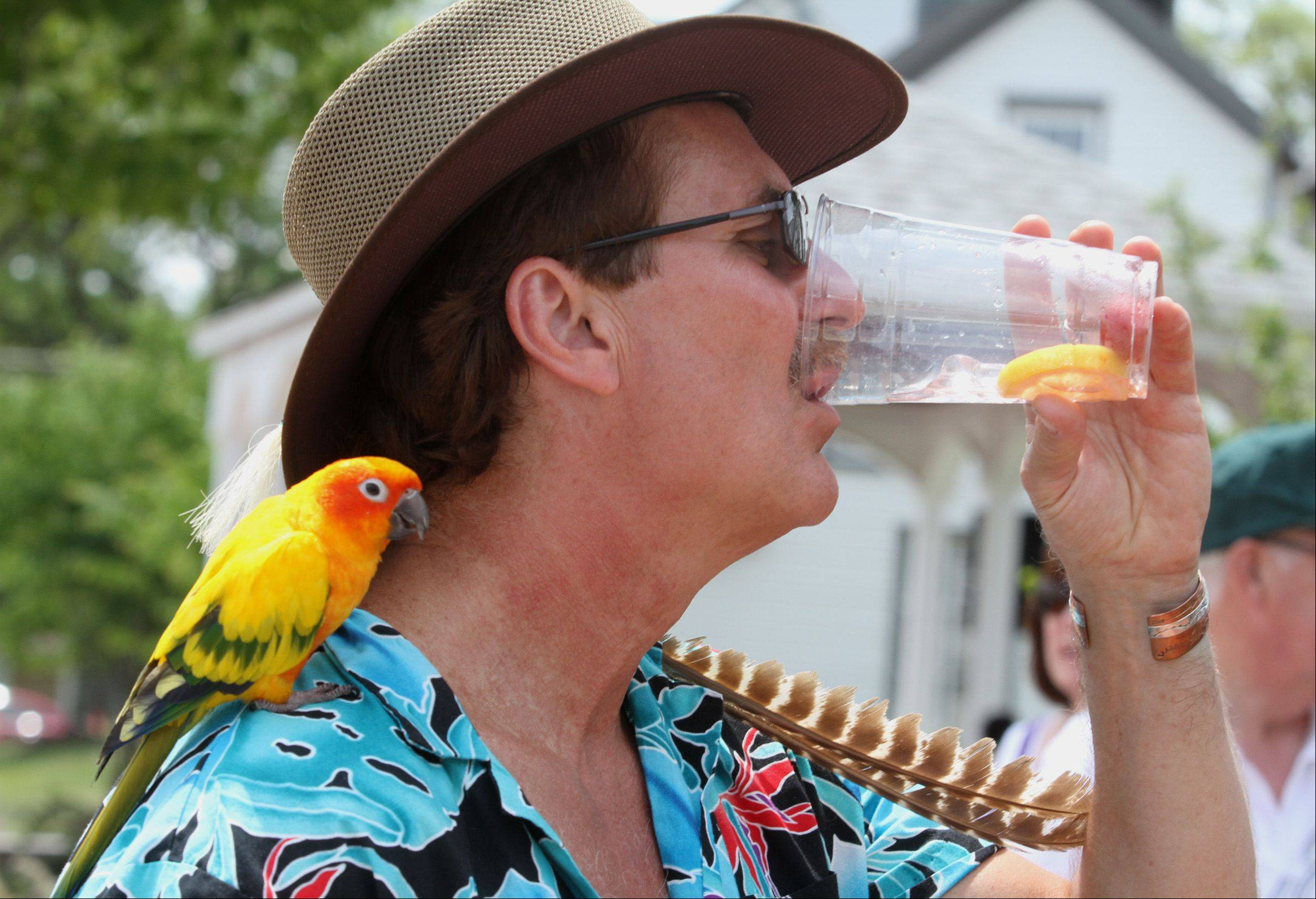 Ken Gaborek of Arlington Heights cools off with a glass of lemonade with his 3-year-old Sun Conure, Reno, at the Long Grove Strawberry Festival on Saturday. The festival continues 10 a.m. to 6 p.m. Sunday.