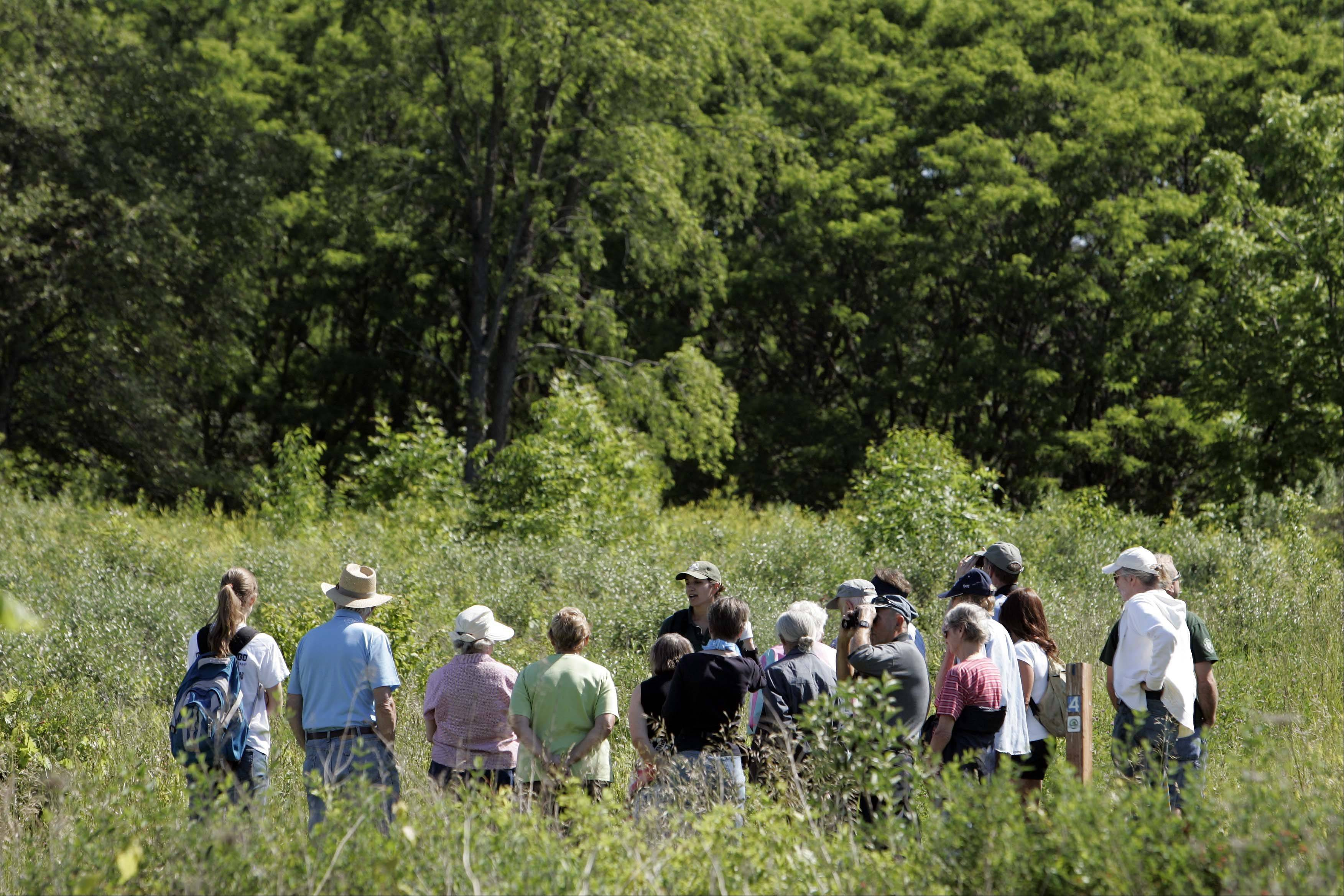Forest Preserve District of Kane County naturalist Jaclyn Olson, top center, with hat, leads a group of seniors on one of the trails during a recent Senior Stroll at the Hampshire Forest Preserve.