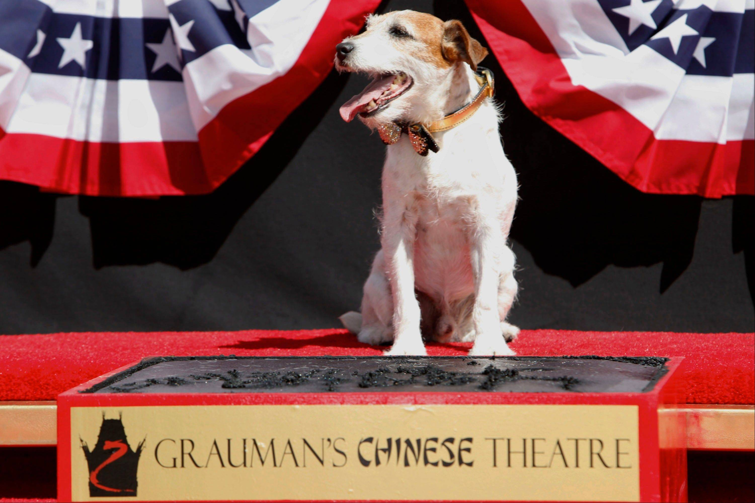 "Uggie, star of the Oscar-winning film ""The Artist,"" became the first dog to cement his paws outside of Grauman's Chinese Theatre. Uggie was celebrated during a ceremony Monday with a cake in the shape of a fire hydrant and a golden bow-tie collar."
