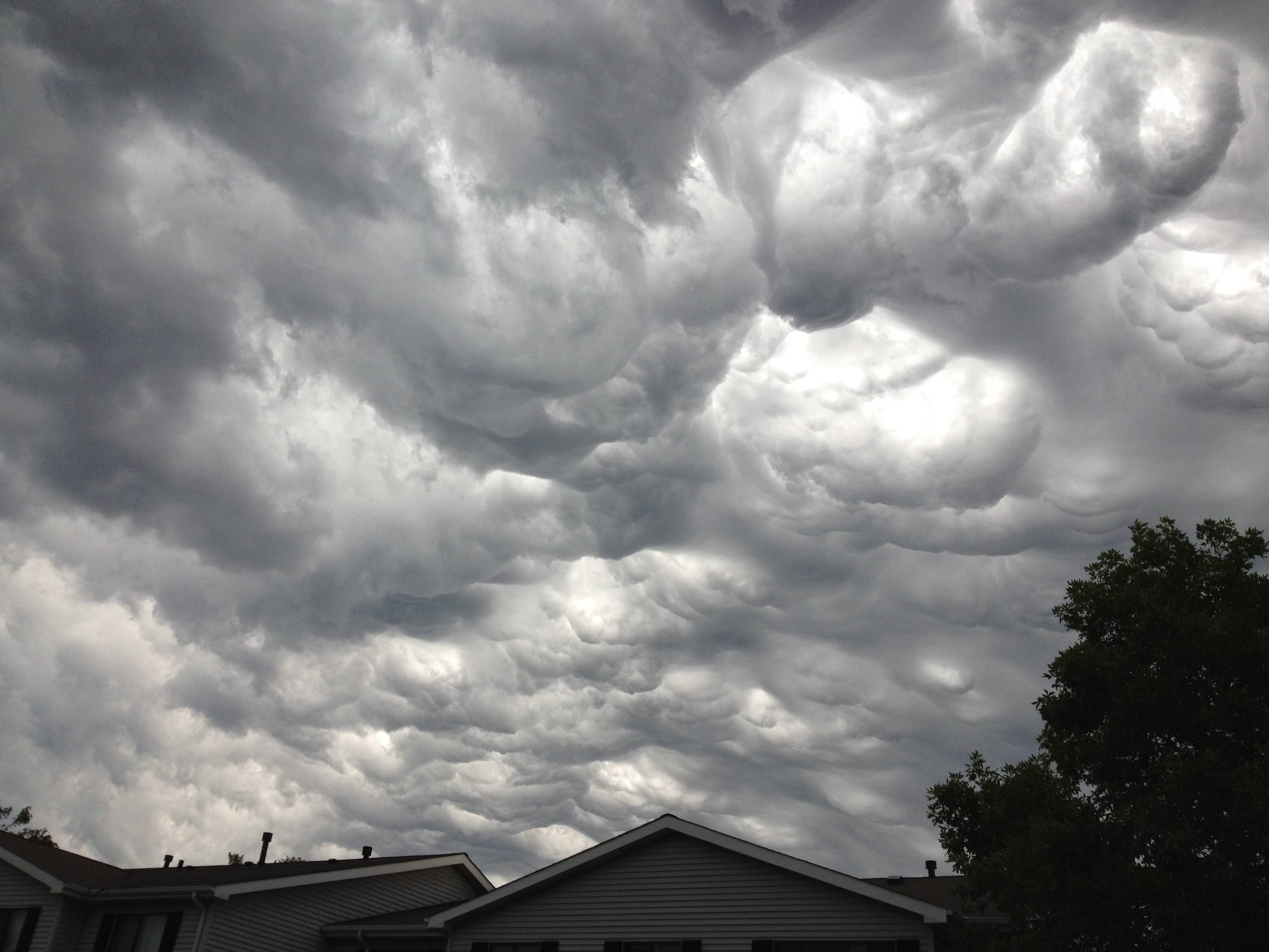 Images: Severe storms roll through the suburbs