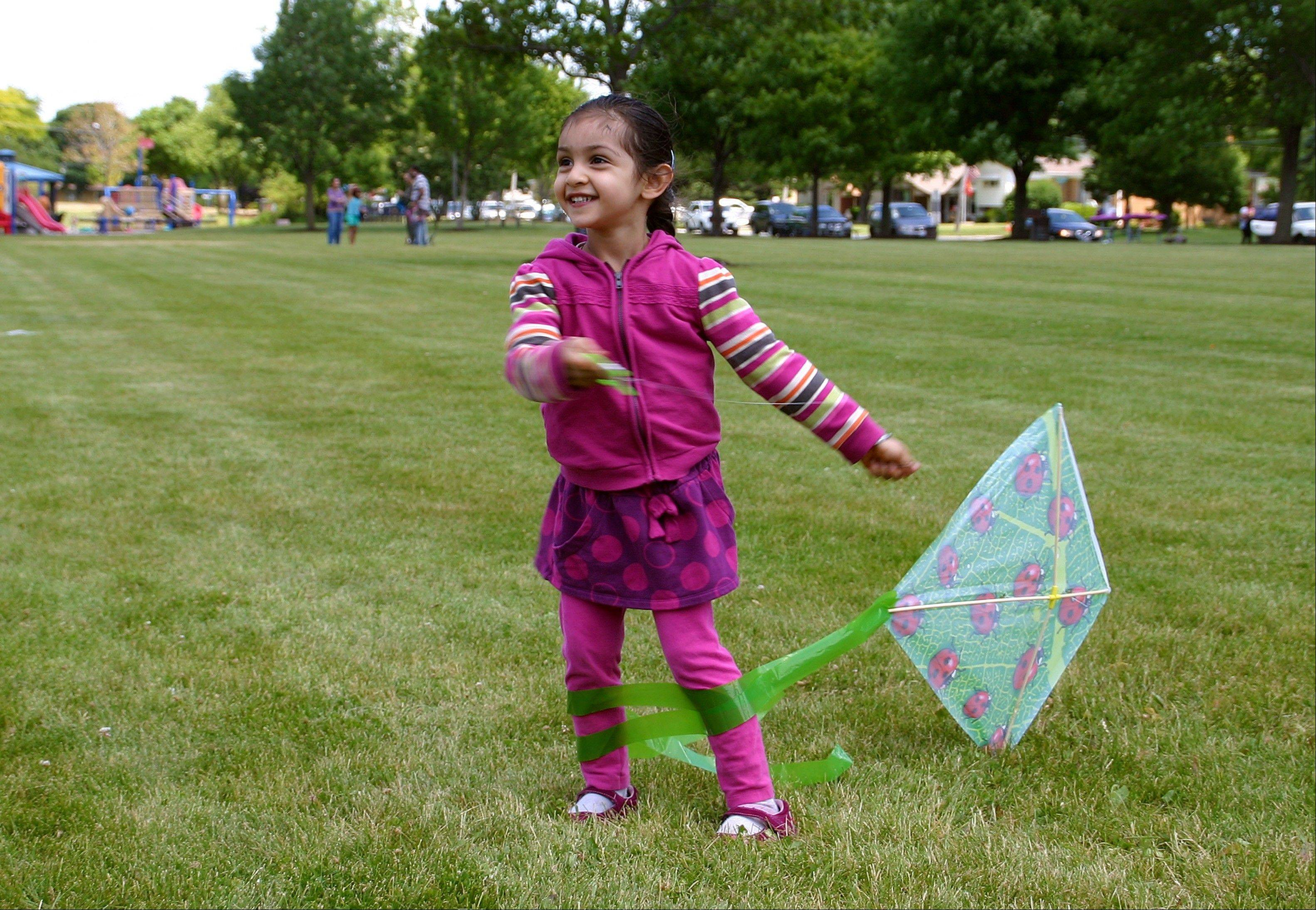 Jasmine Kaur, 3, gets ready to fly her ladybug kite at the Des Plaines Optimist's Club free Kite Fly on June 2.