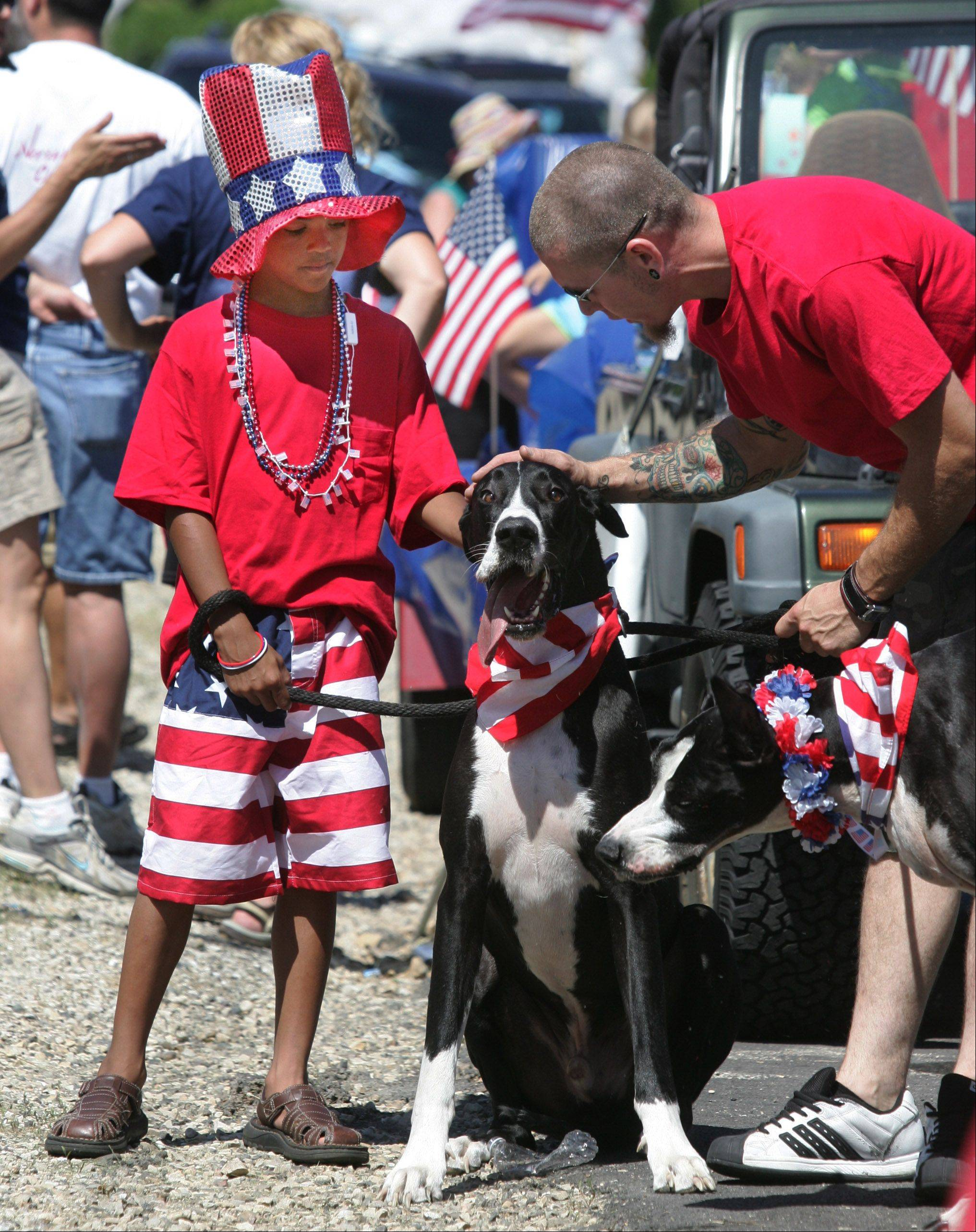 These Great Danes were a hit at the 2010 Antioch Fourth of July parade.